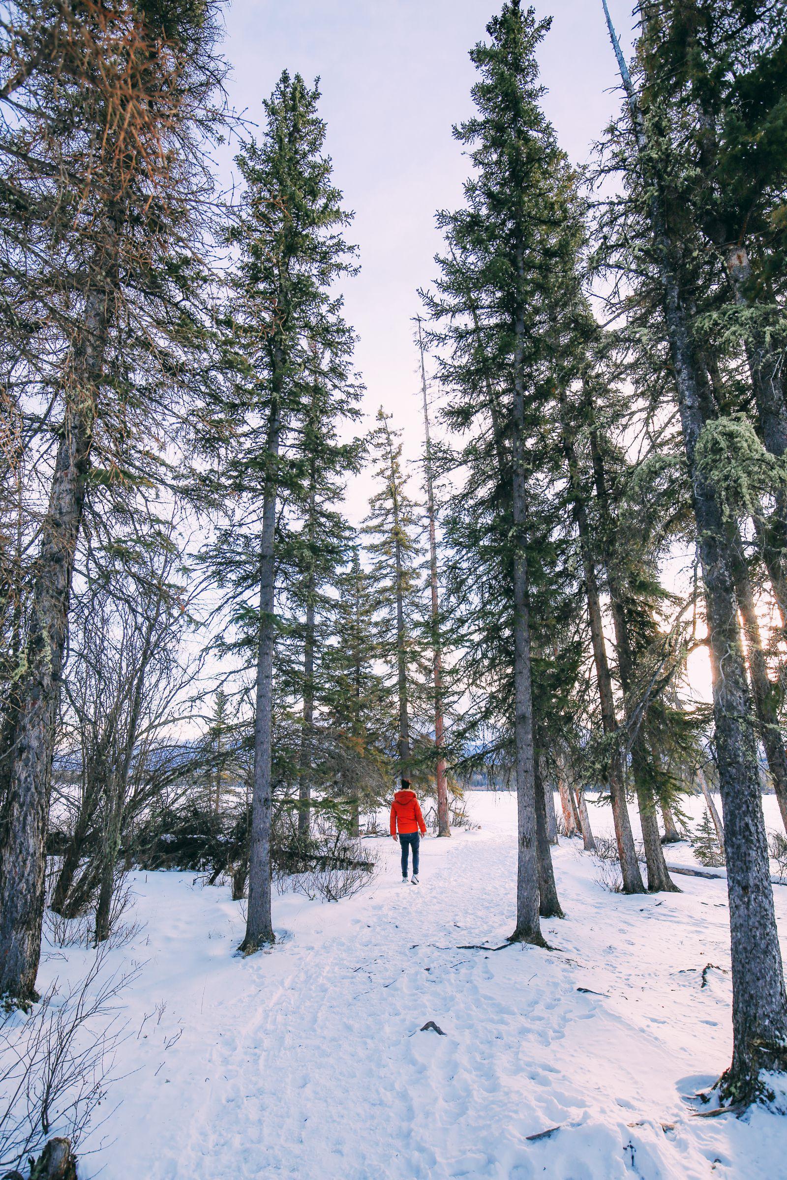 The Amazing Beauty Of Jasper National Park... In Alberta, Canada (49)