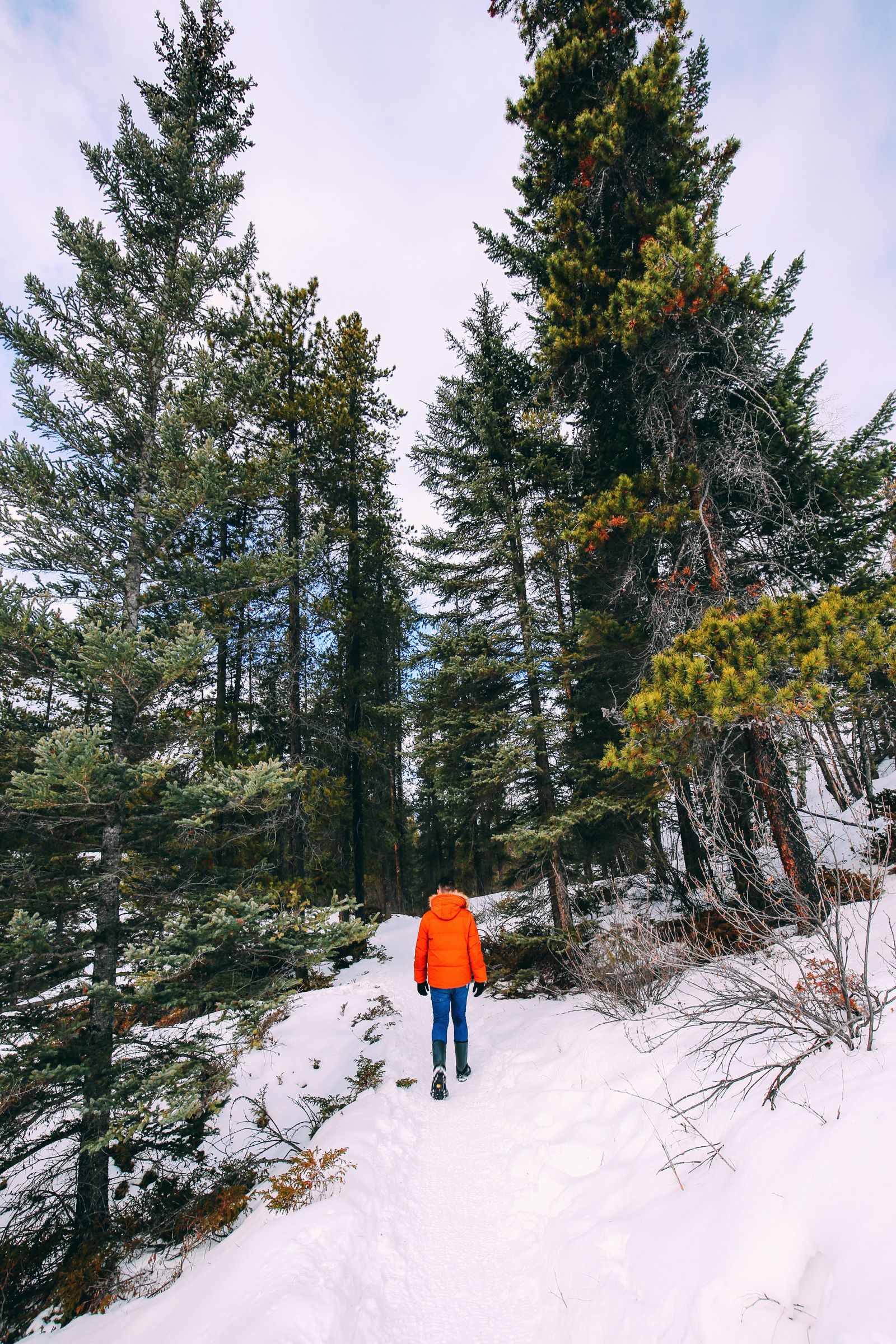 The Most Beautiful Place In Jasper (Canada) You've Never Heard Of! (62)