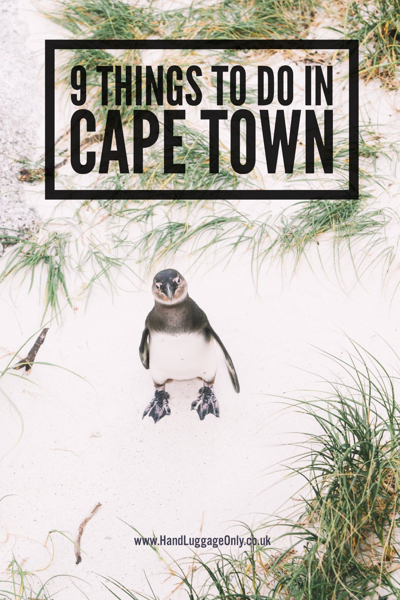 9 Things To Do In Cape Town, South Africa