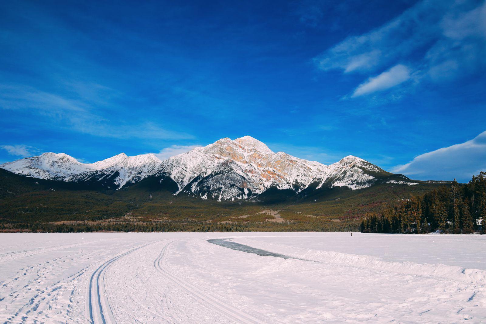 Dog Sledding In Jasper And Ice Hockey In Edmonton - 2 Canadian 'Must-Do's! (12)