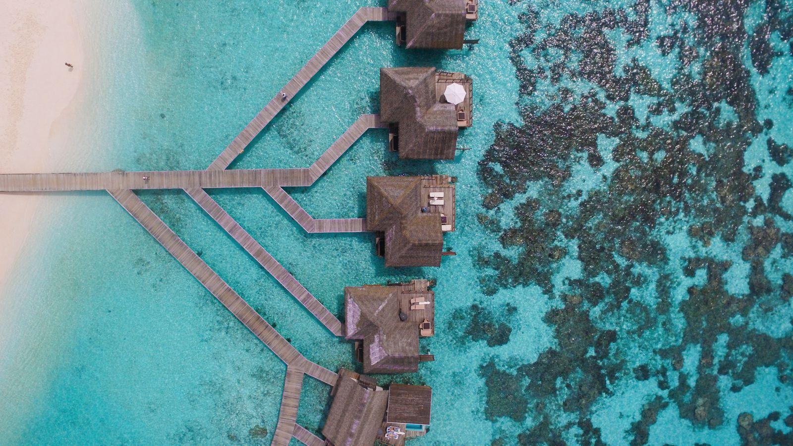 Swimming With Wild Turtles And Those Amazing Island Colours... At Kandolhu Island, Maldives (41)