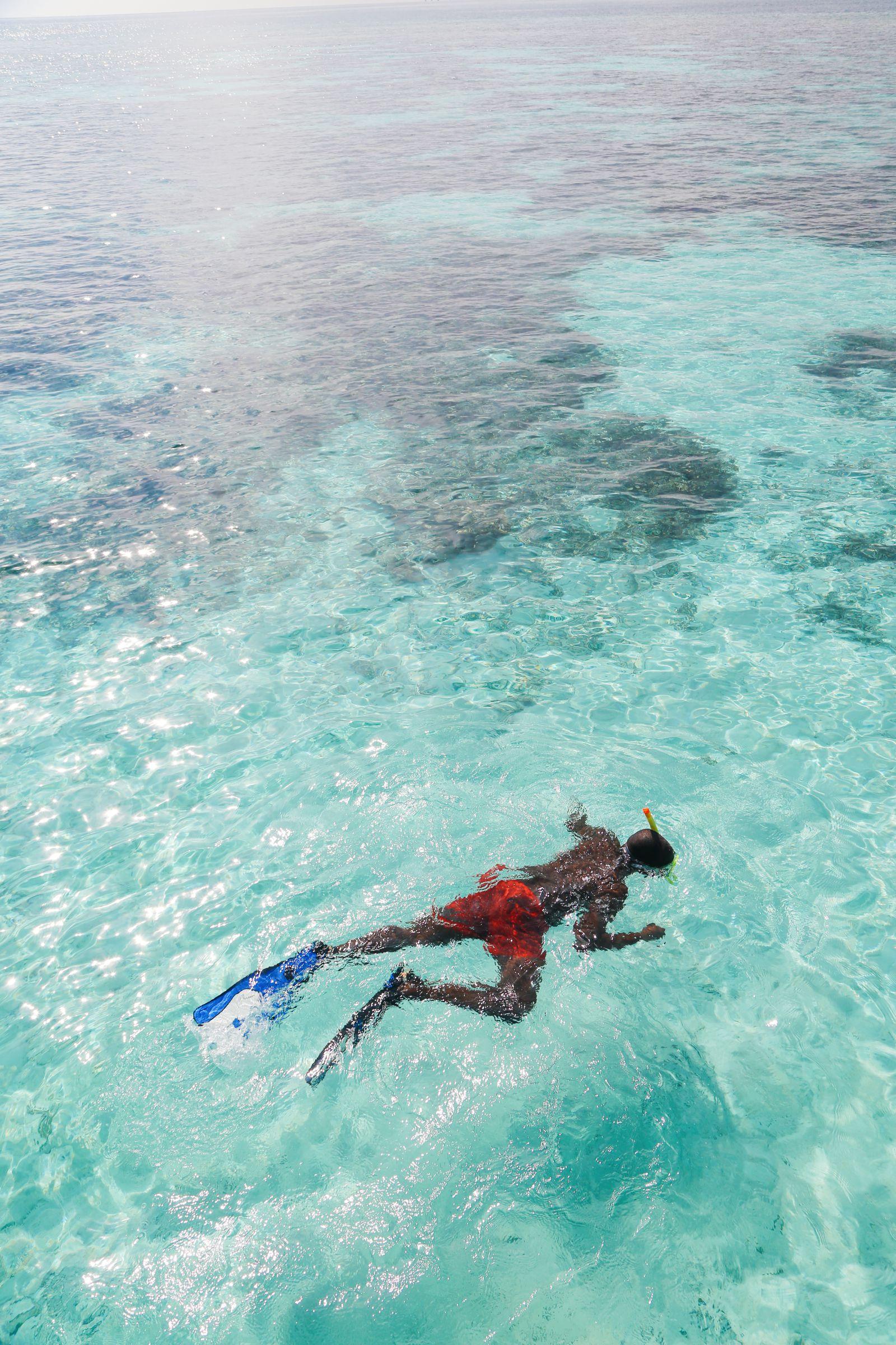 Swimming With Wild Turtles And Those Amazing Island Colours... At Kandolhu Island, Maldives (34)