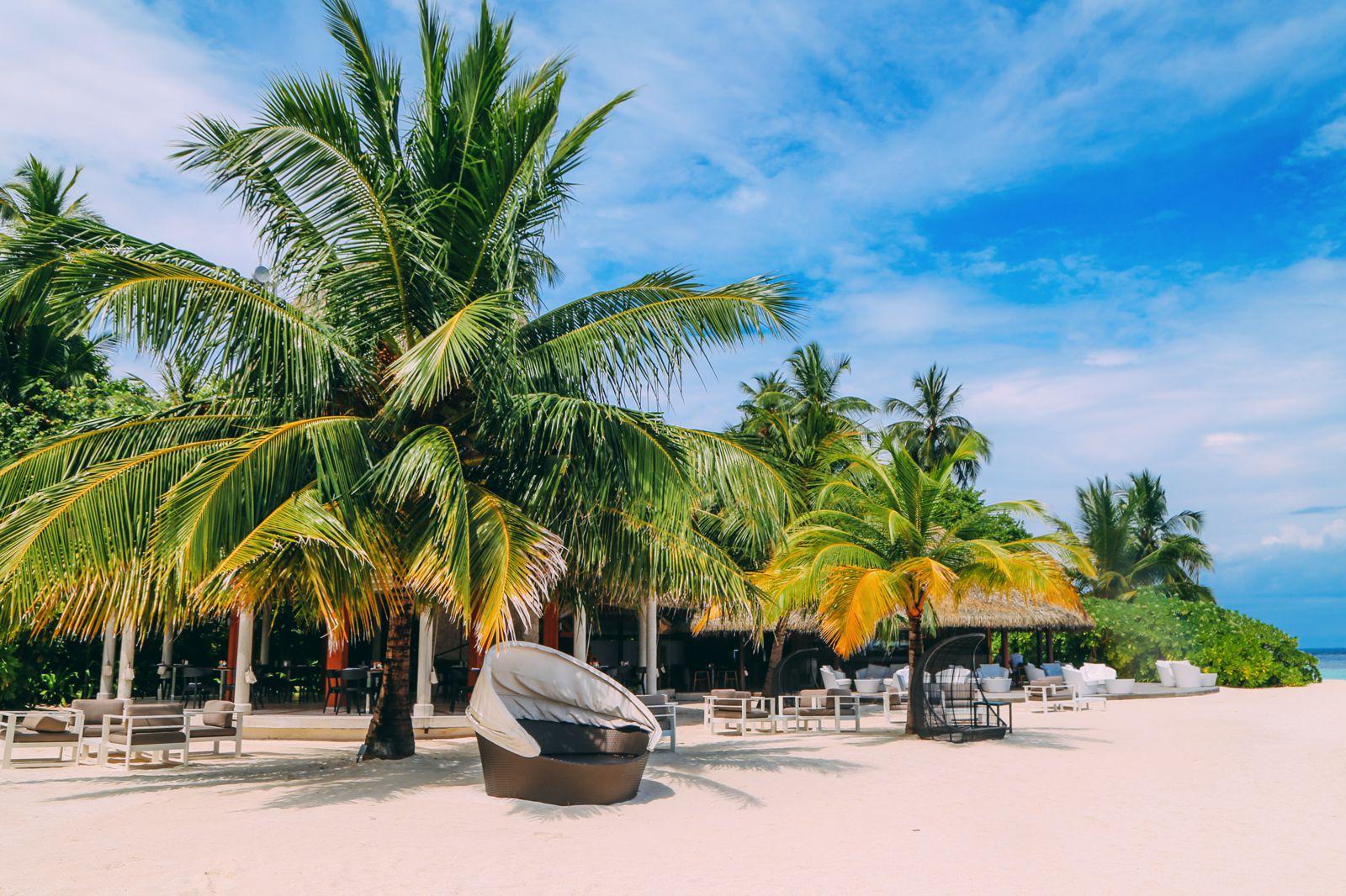 Swimming With Wild Turtles And Those Amazing Island Colours... At Kandolhu Island, Maldives (59)