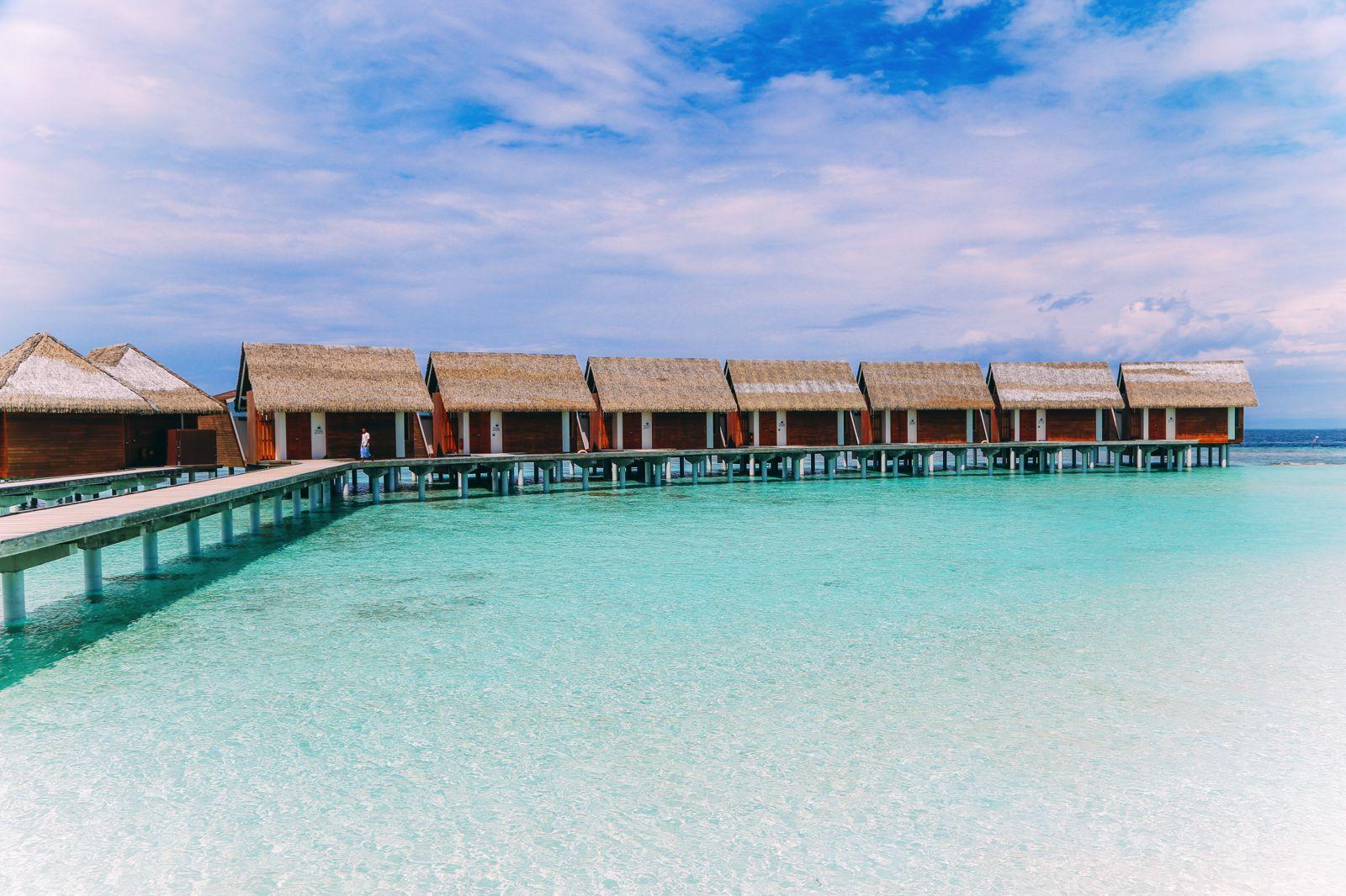 Swimming With Wild Turtles And Those Amazing Island Colours... At Kandolhu Island, Maldives (60)