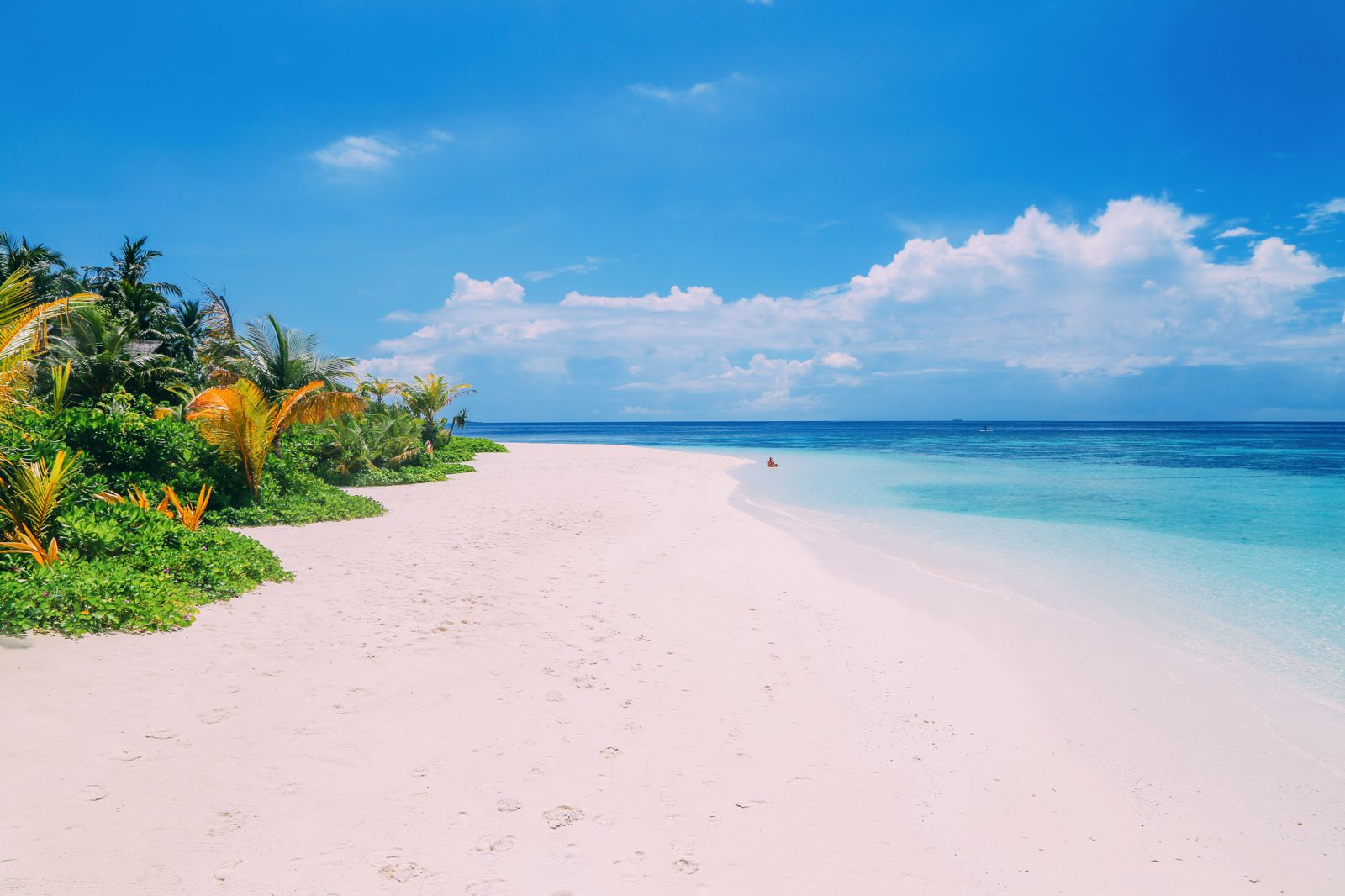 Swimming With Wild Turtles And Those Amazing Island Colours... At Kandolhu Island, Maldives (61)