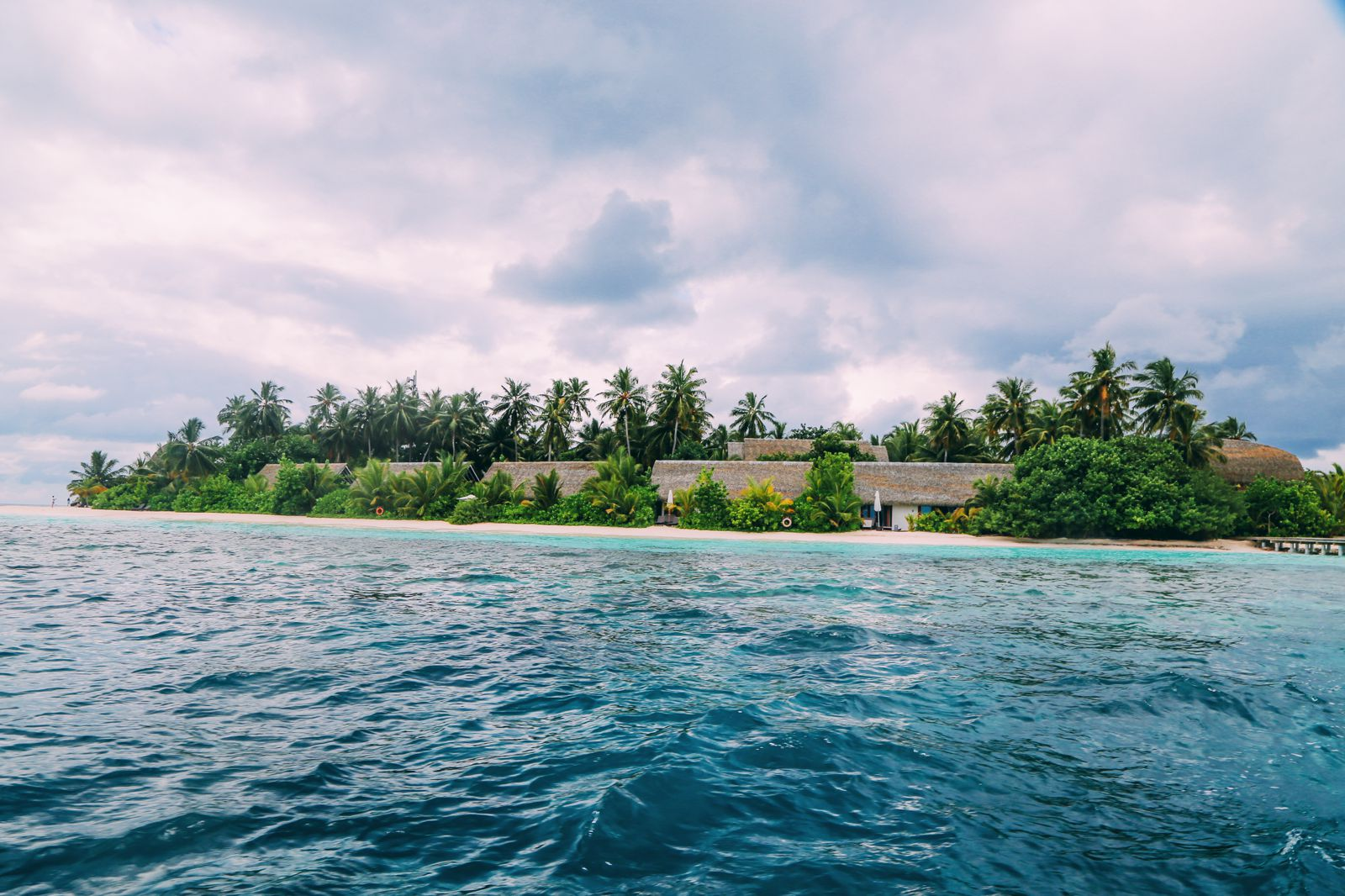 Swimming With Wild Turtles And Those Amazing Island Colours... At Kandolhu Island, Maldives (66)