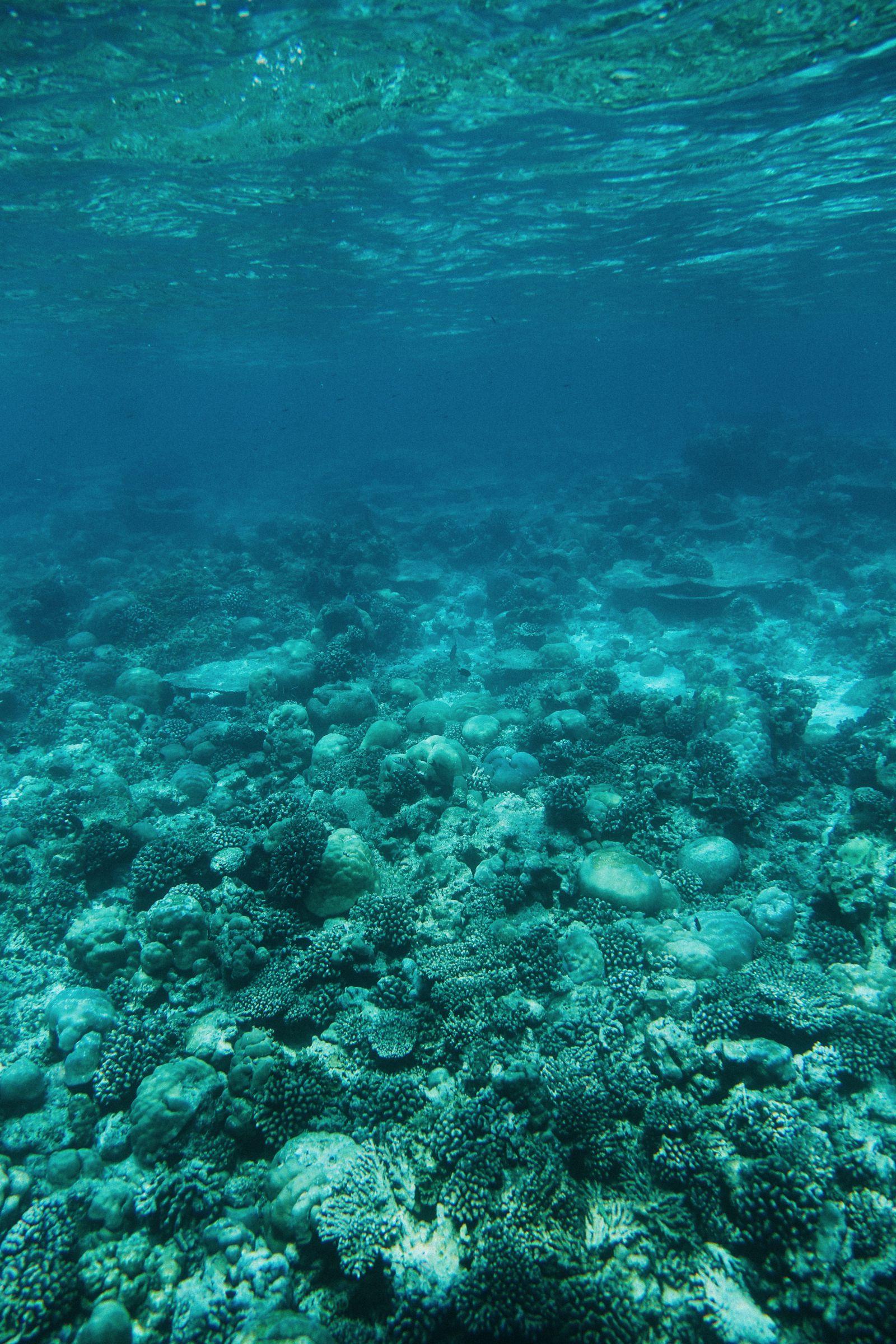 The Perfectly Lazy Day... In Kuramathi Island Maldives (9)