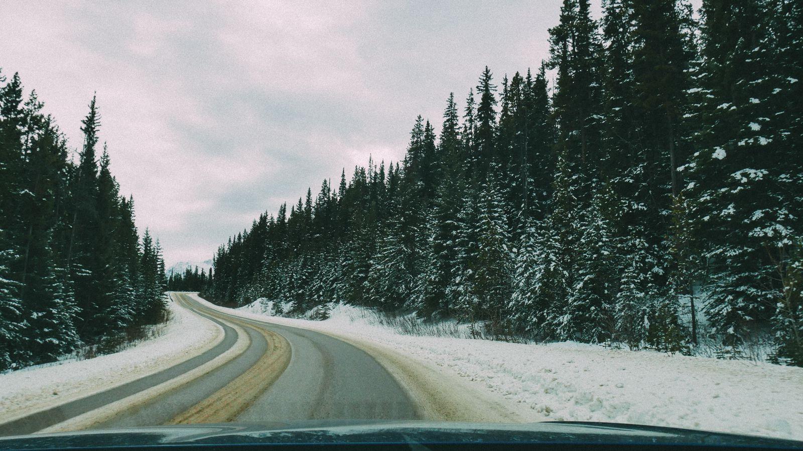 Where To Go Skiing In Jasper, Canada? Marmot Basin! (31)