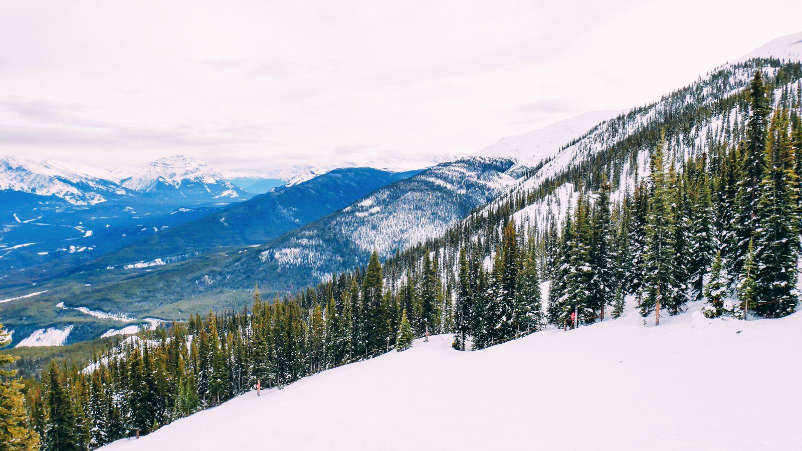 Where To Go Skiing In Jasper, Canada? Marmot Basin! (20)