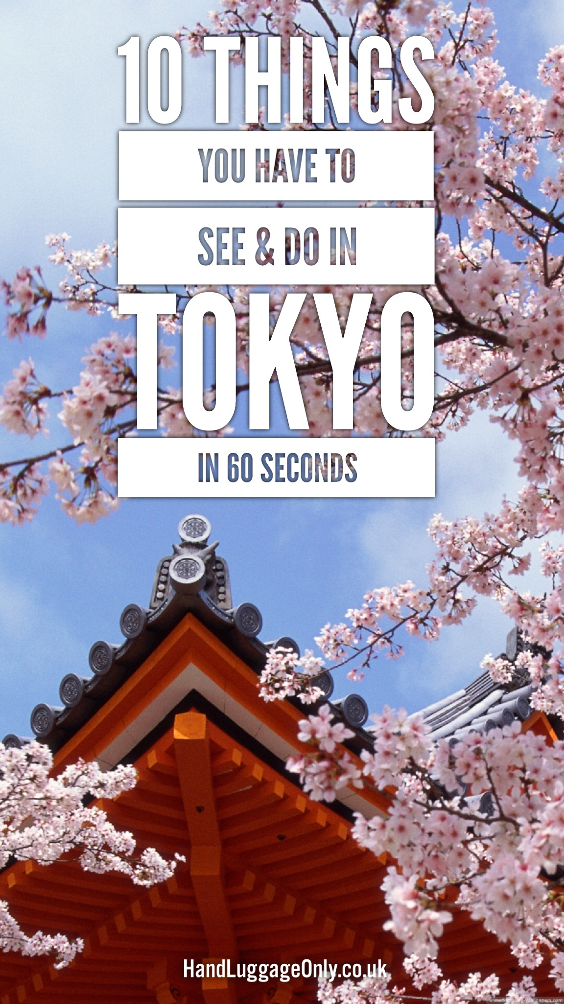 10 Things You Have To Do In Tokyo