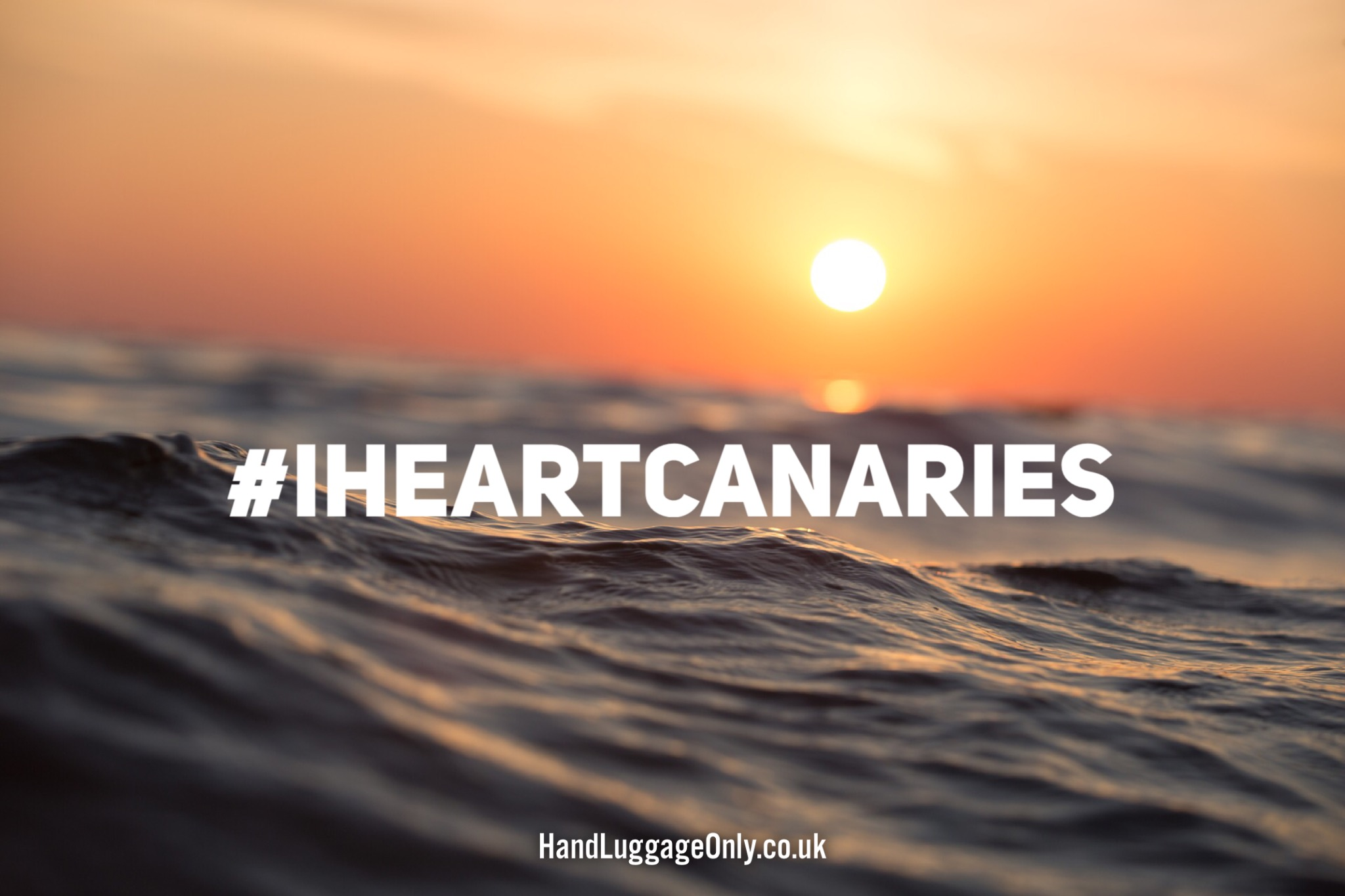 #IheartCanaries