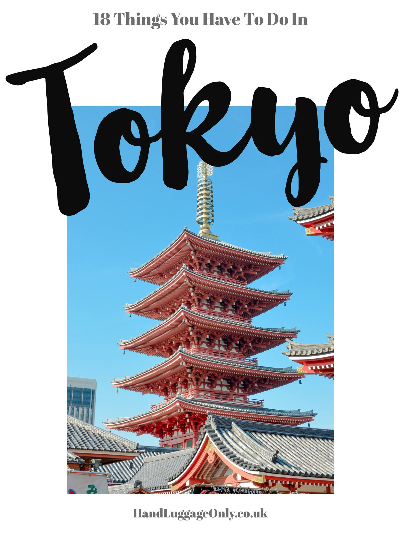 18 Fun Things You Have To See And Do In Tokyo (2)