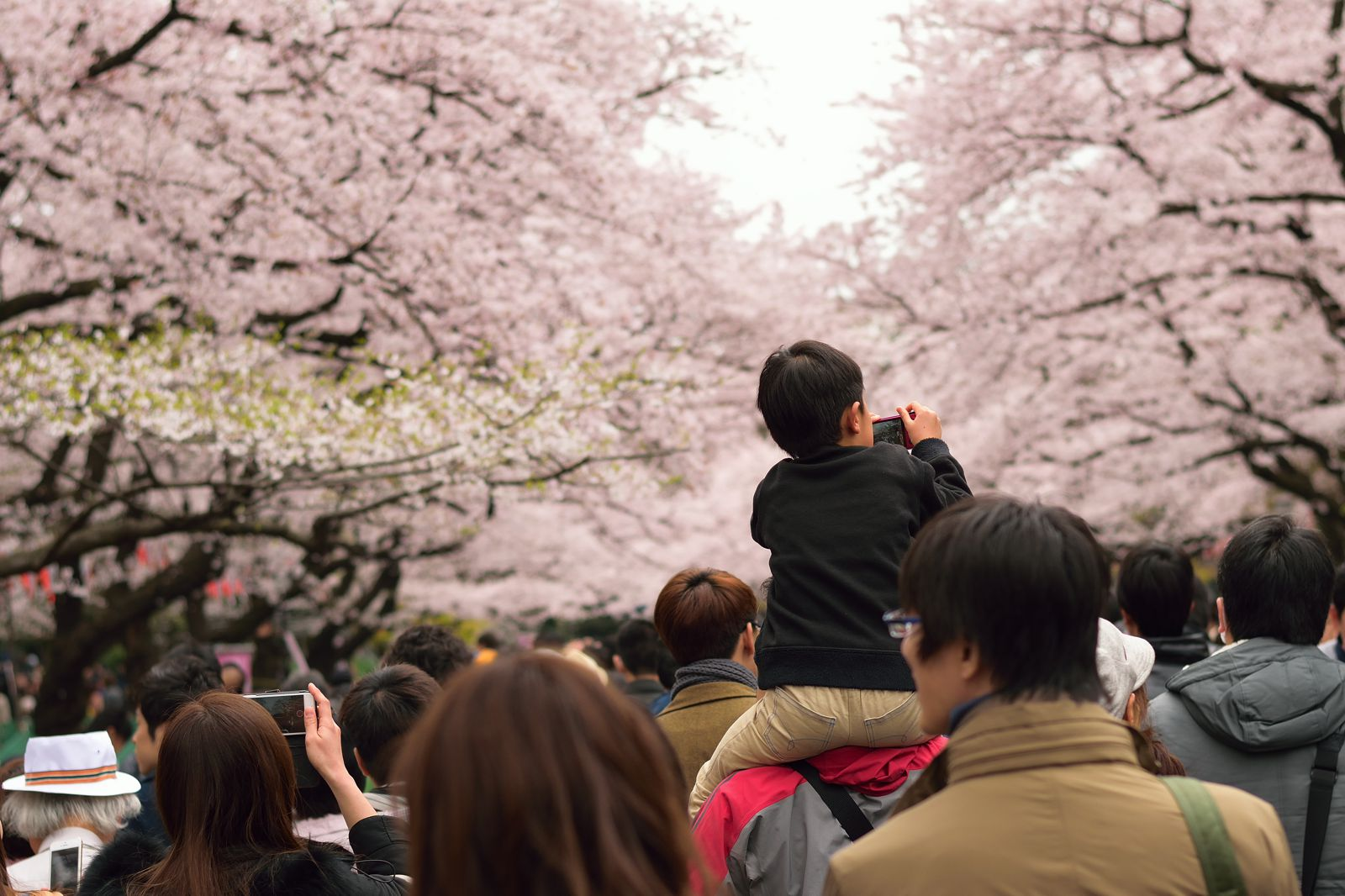 18 Fun Things You Have To See And Do In Tokyo (4)