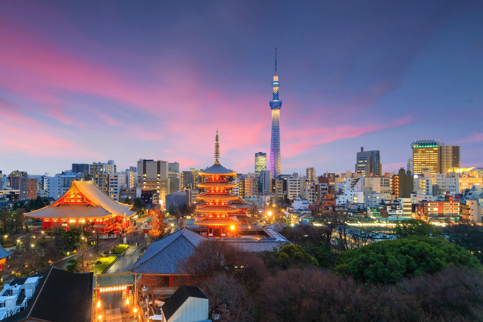 18 Fun Things You Have To See And Do In Tokyo (16)