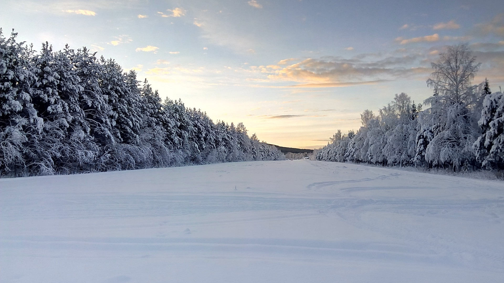 11 Places You Have To See When Visiting Sweden (9)