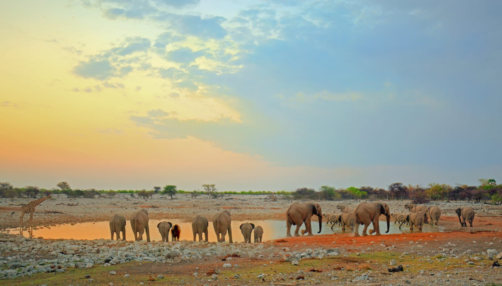 11 Beautiful Places You Have To See In Namibia (6)
