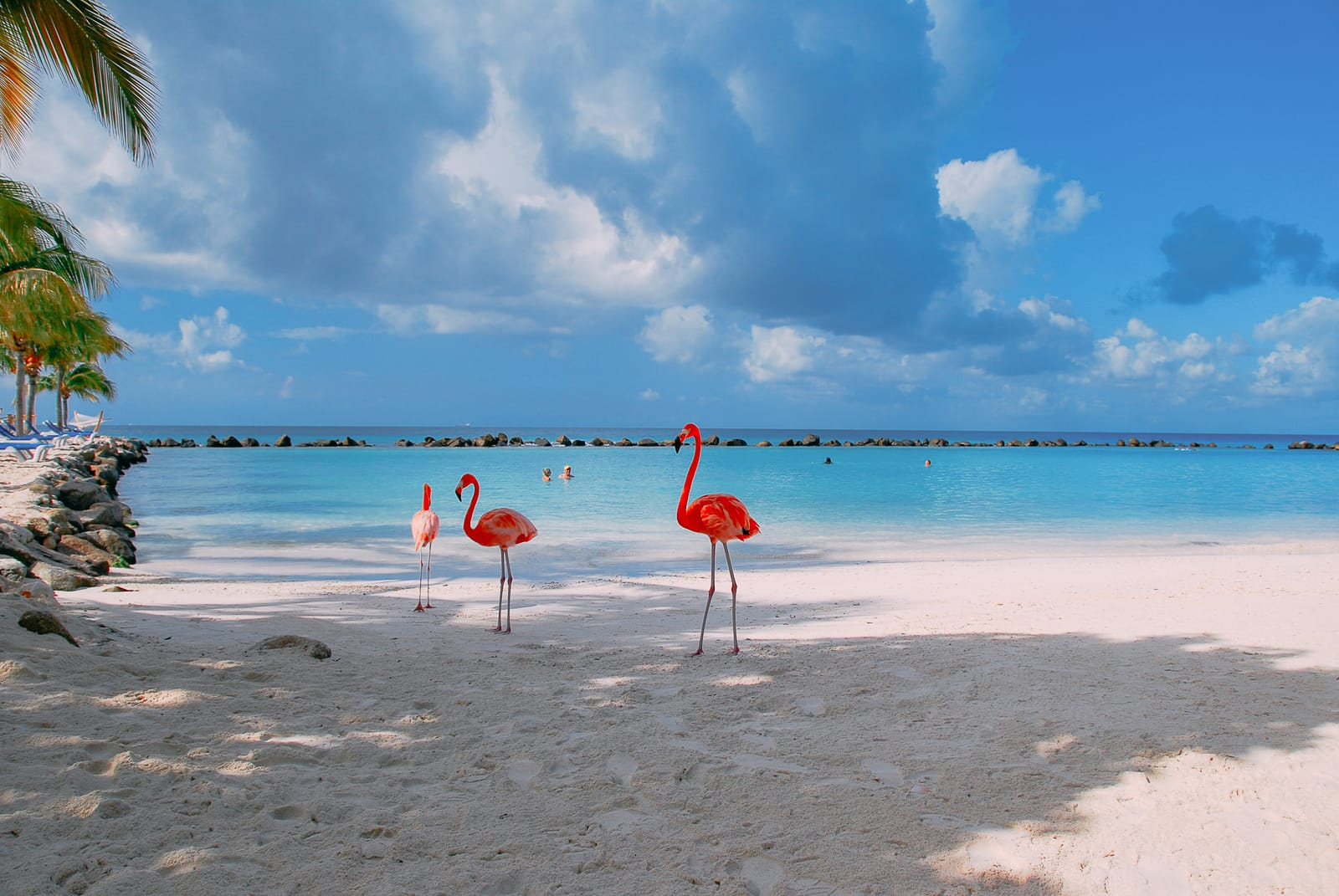Best Things To Do In The Bahamas (13)
