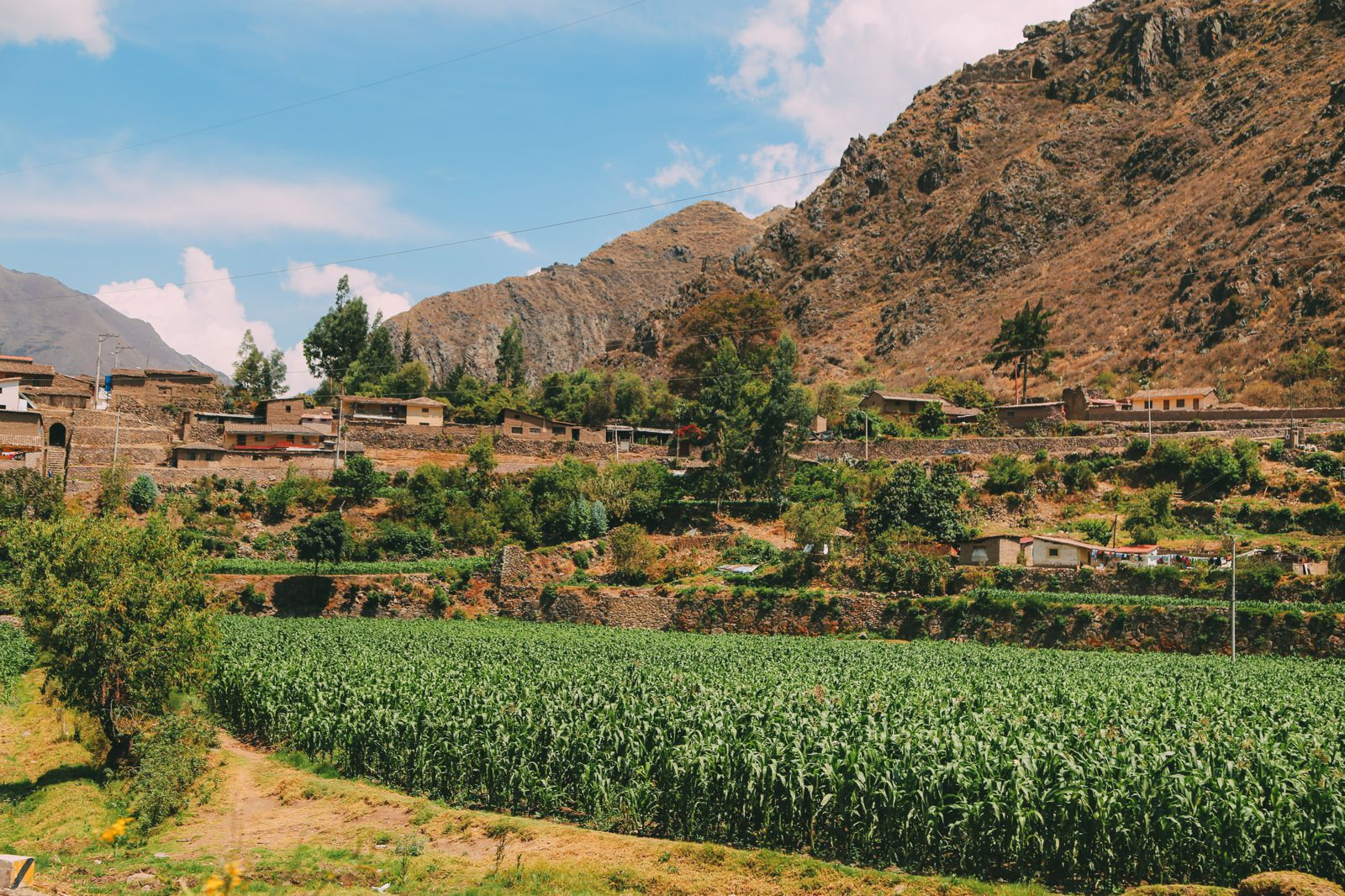 The Journey Up To Machu Picchu Village - Aguas Calientes, Peru (20)