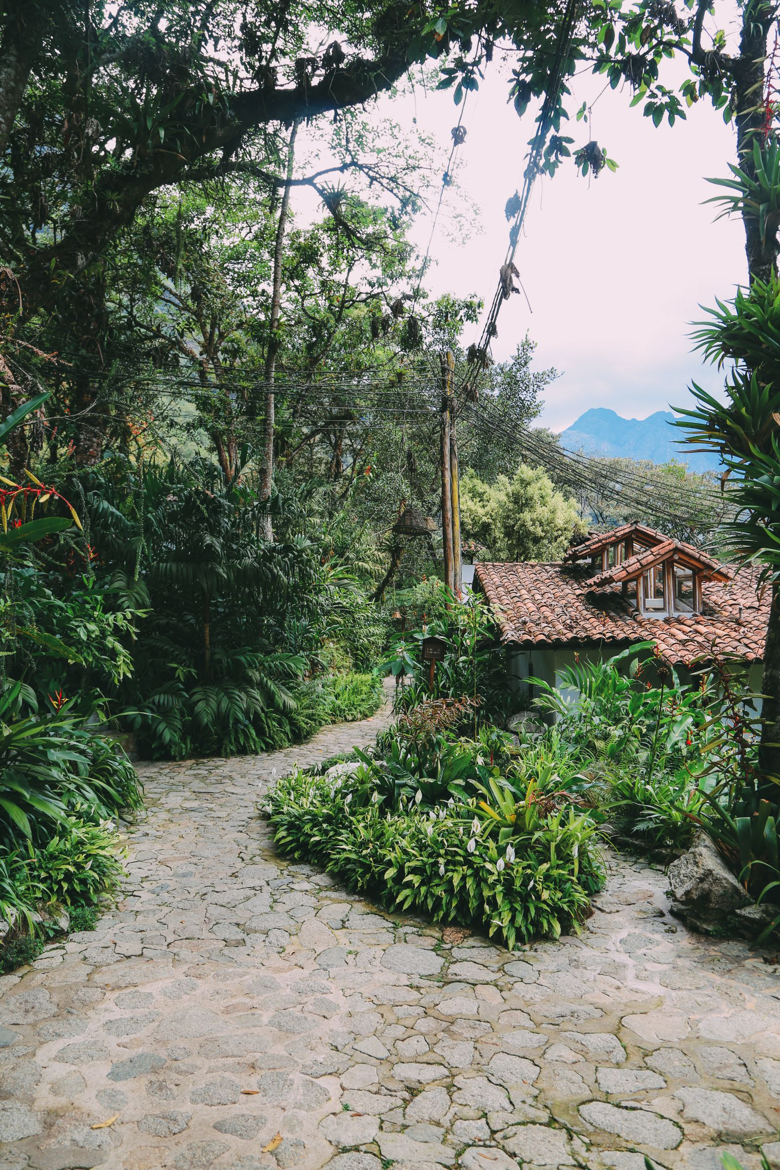 Where To Stay (And What To Do) In Aguas Caliente - The Entry Point To Machu Picchu, Peru (7)