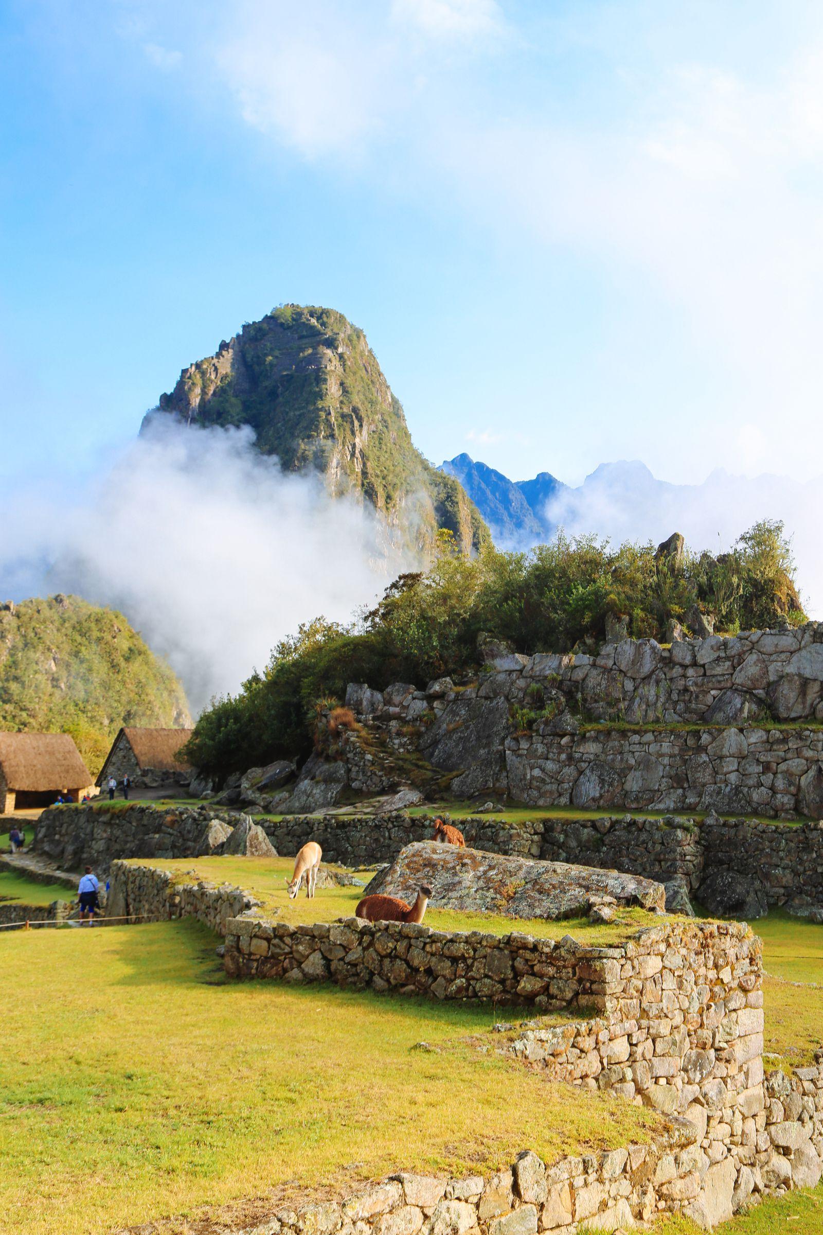 Visiting The Ancient Inca Site Of Macchu Picchu, Peru (39)