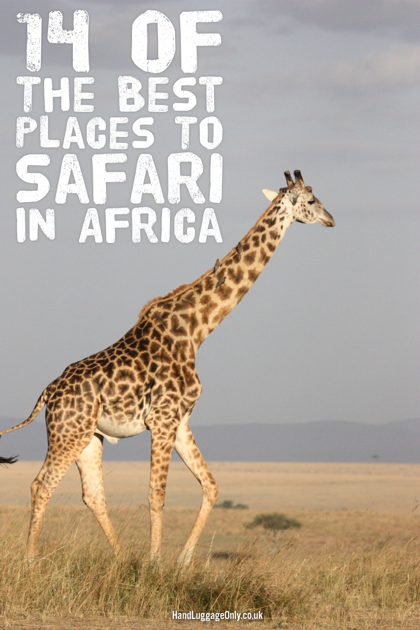 14 Of The Best Places To Safari In Africa (1)