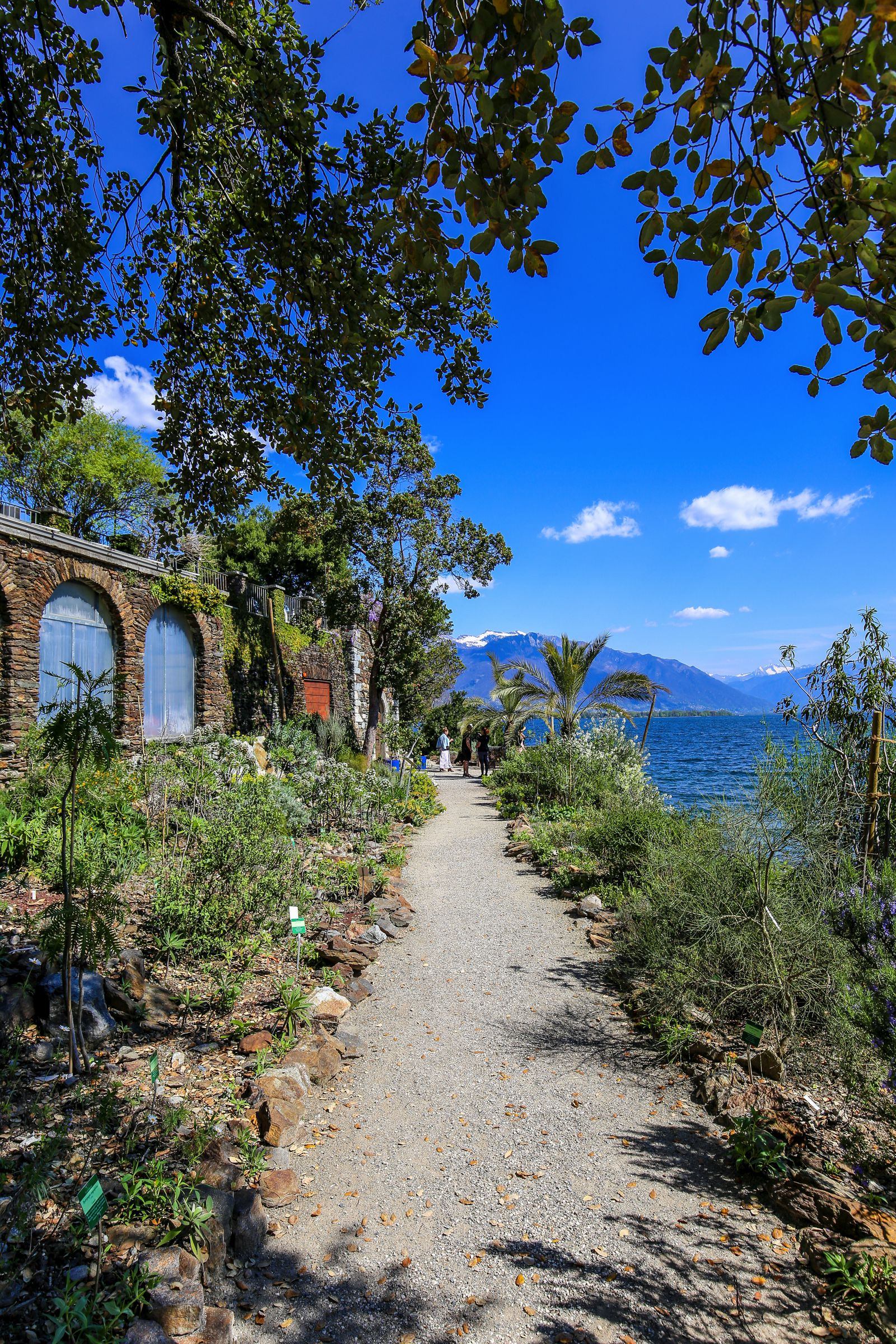 An Afternoon In One Of The Smallest Islands In Europe – Brissago Island (11)