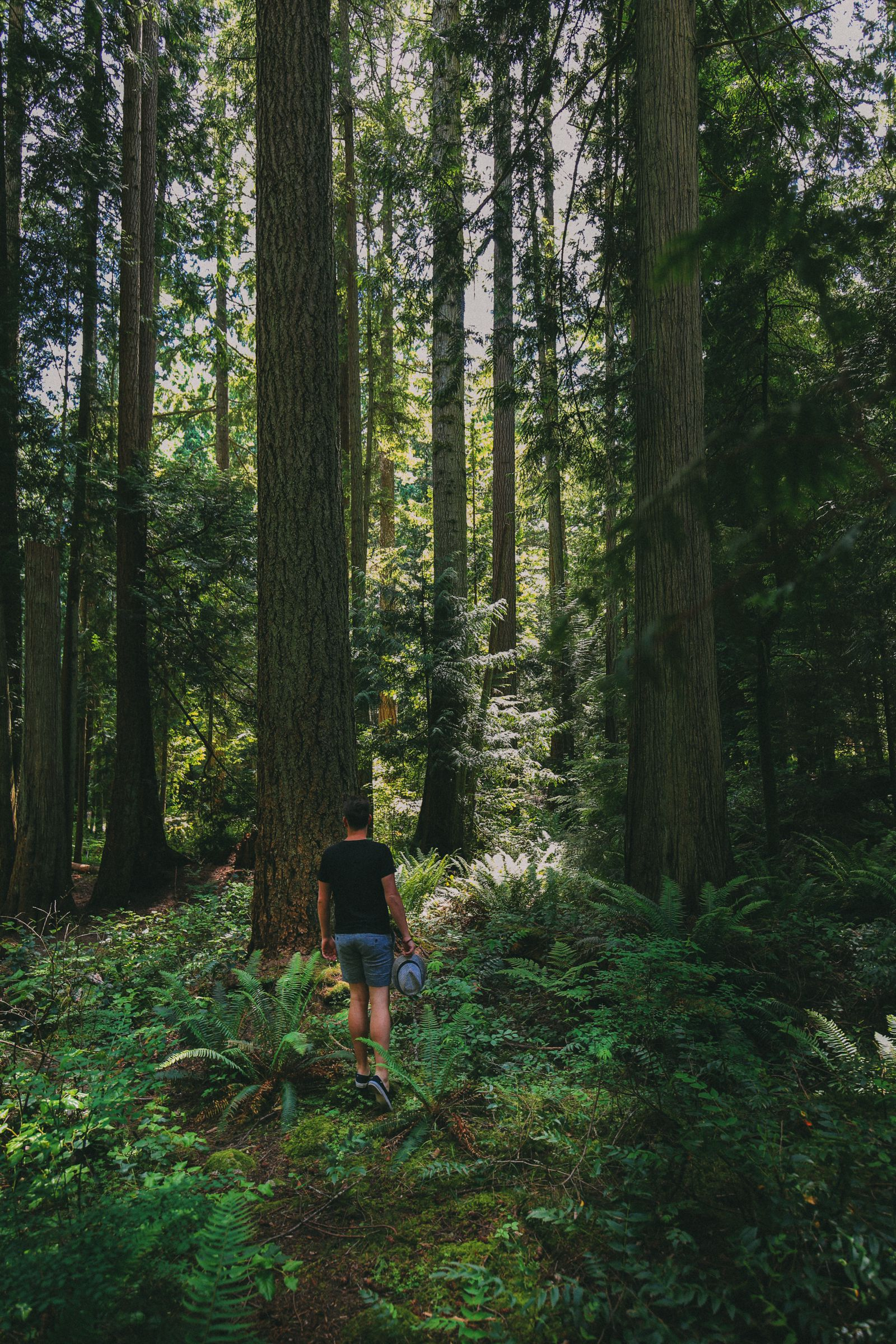 Photos And Postcards From Vancouver, Whistler, Squamish And The Sunshine Coast... In British Columbia, Canada (18)