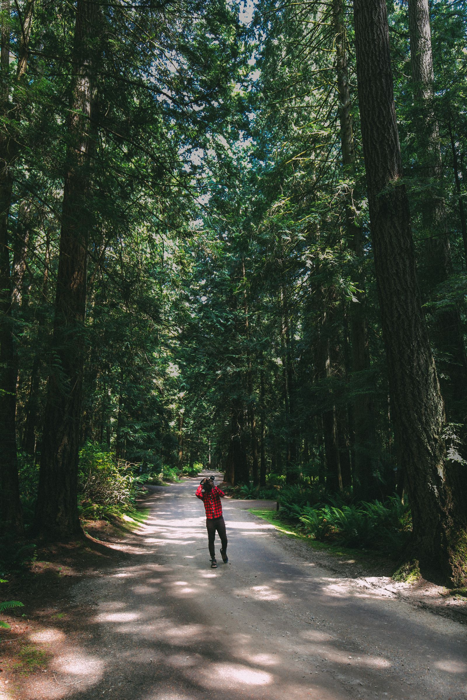 Photos And Postcards From Vancouver, Whistler, Squamish And The Sunshine Coast... In British Columbia, Canada (19)
