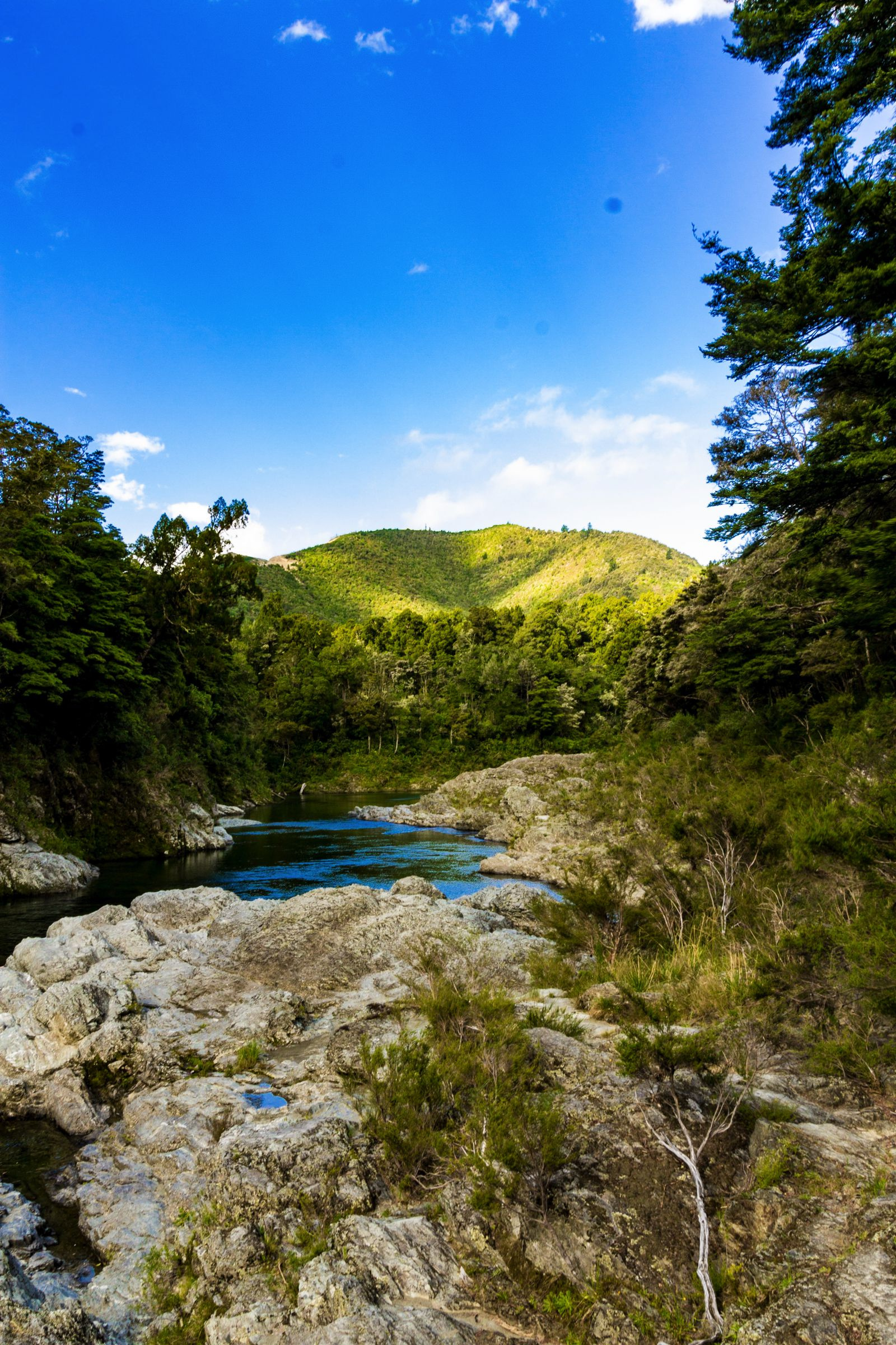 10 Absolutely Beautiful Hiking Trails You Have To Do In New Zealand (5)