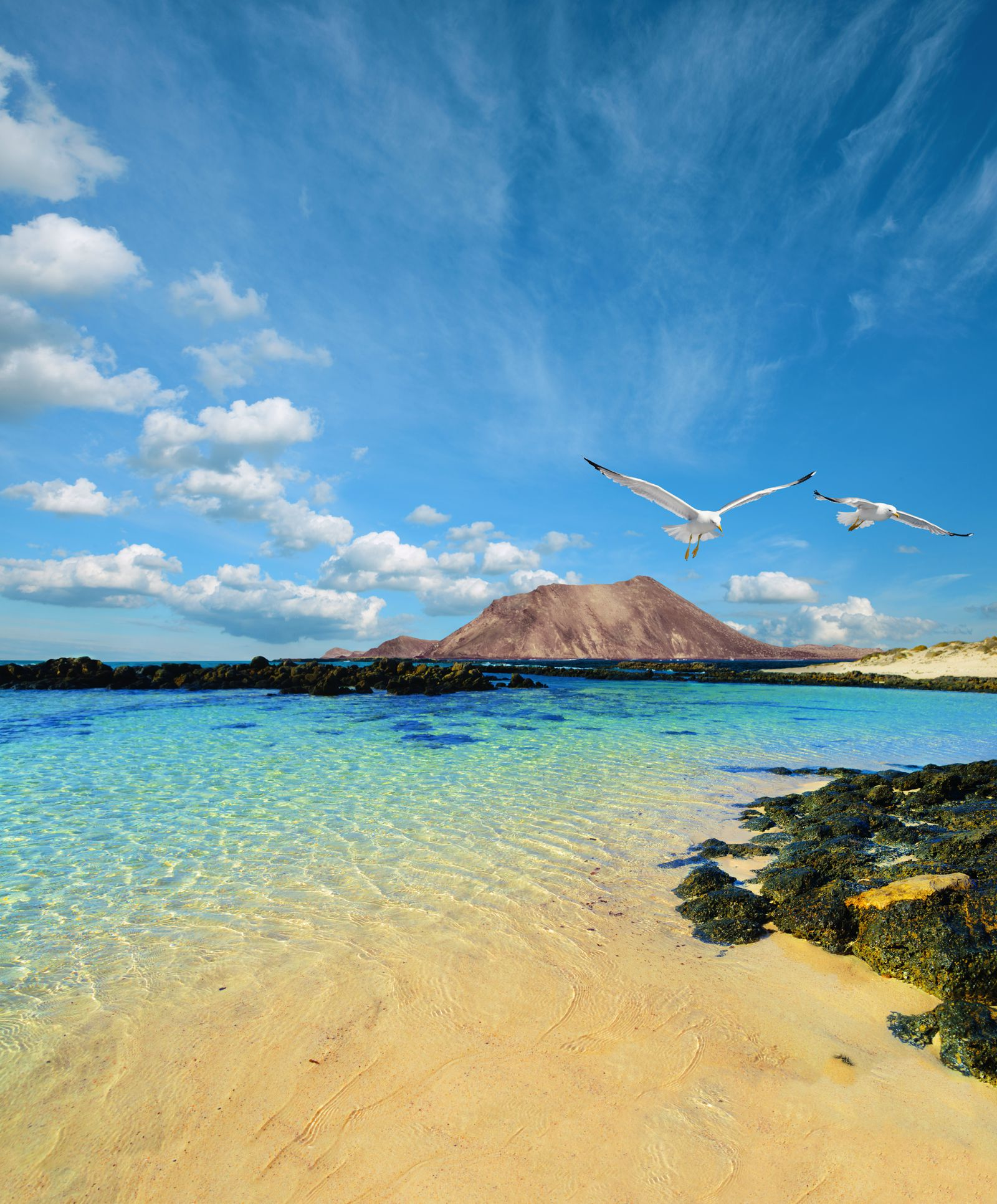 24 Things To See And Do In The Canary Islands (16)