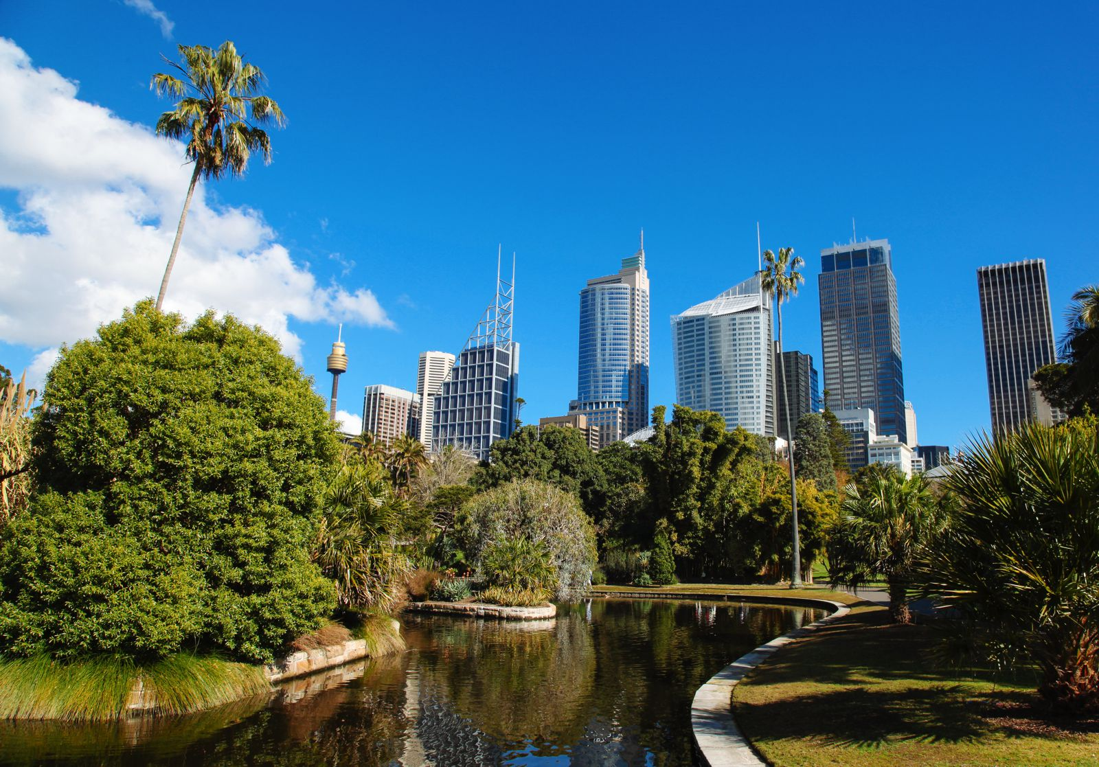 The 10 Places To Get The Best Views In Sydney, Australia (6)