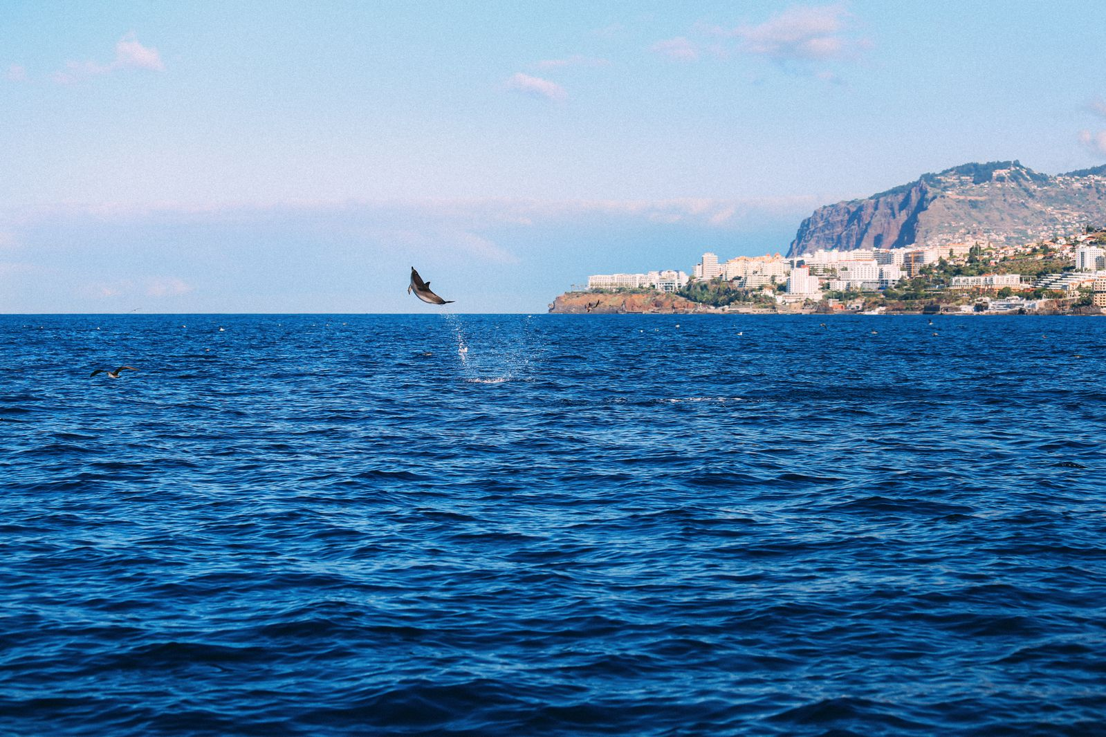 The Complete Guide To Visiting Madeira Things To See Do Eat (22)
