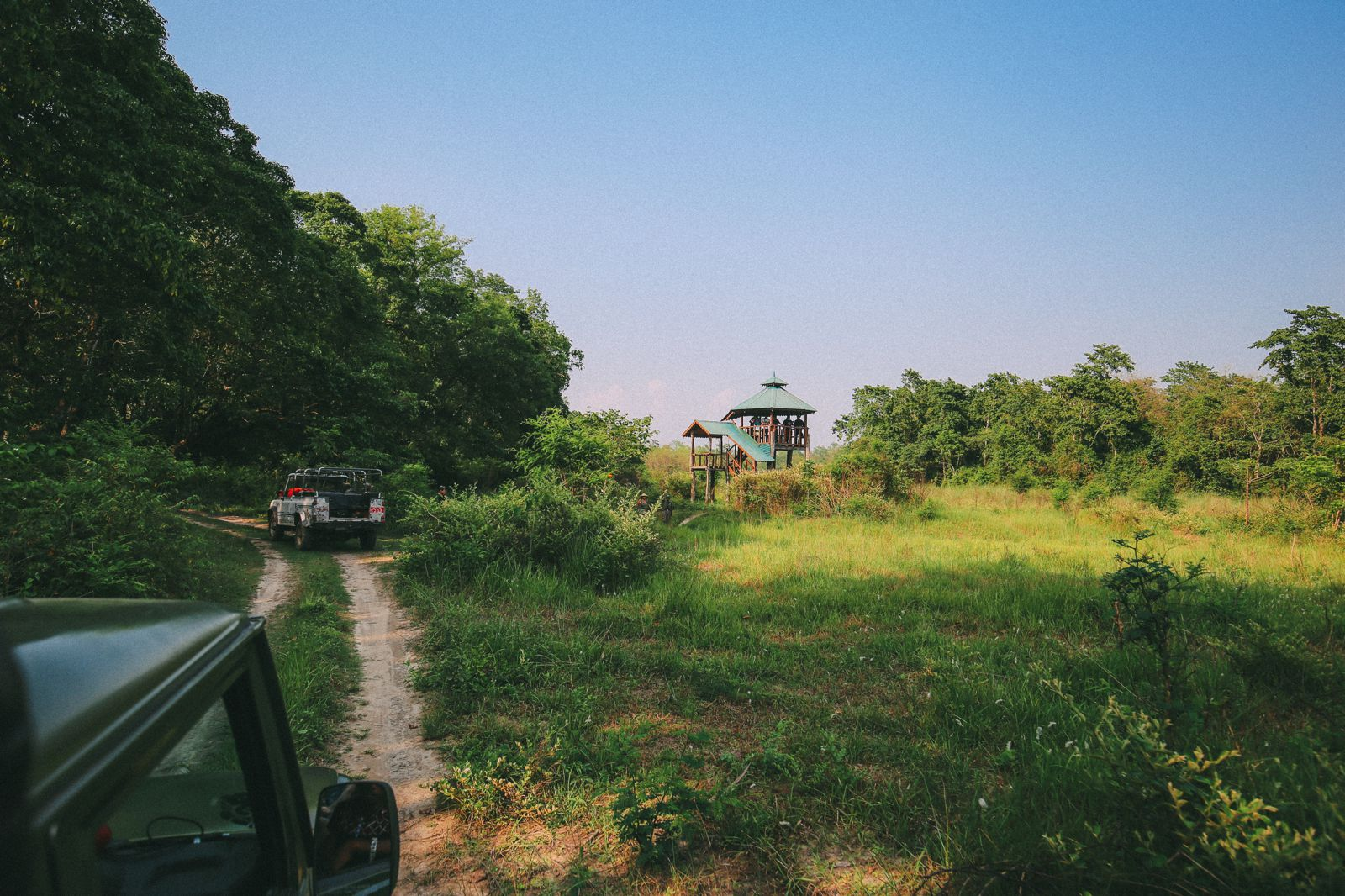 The Search For The One-Horned Rhino... In Chitwan, Nepal (25)