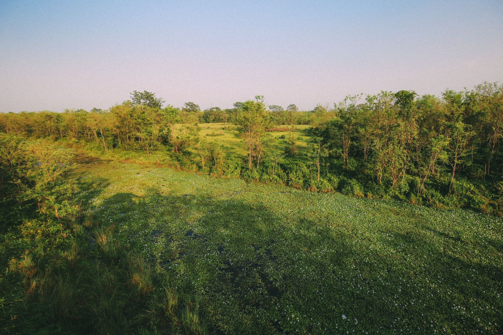 The Search For The One-Horned Rhino... In Chitwan, Nepal (41)