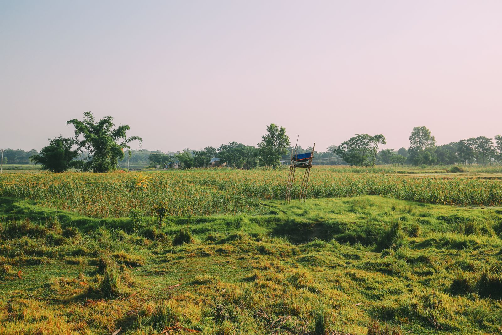 The Sights, Sounds And People Of Chitwan, Nepal (2)