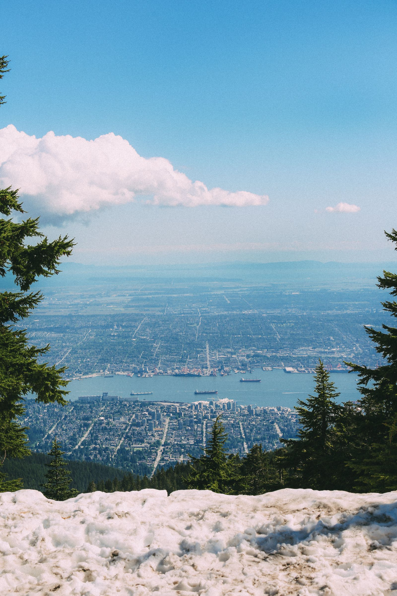 Finding Grizzly Bears On Grouse Mountain... In Vancouver, Canada (37)