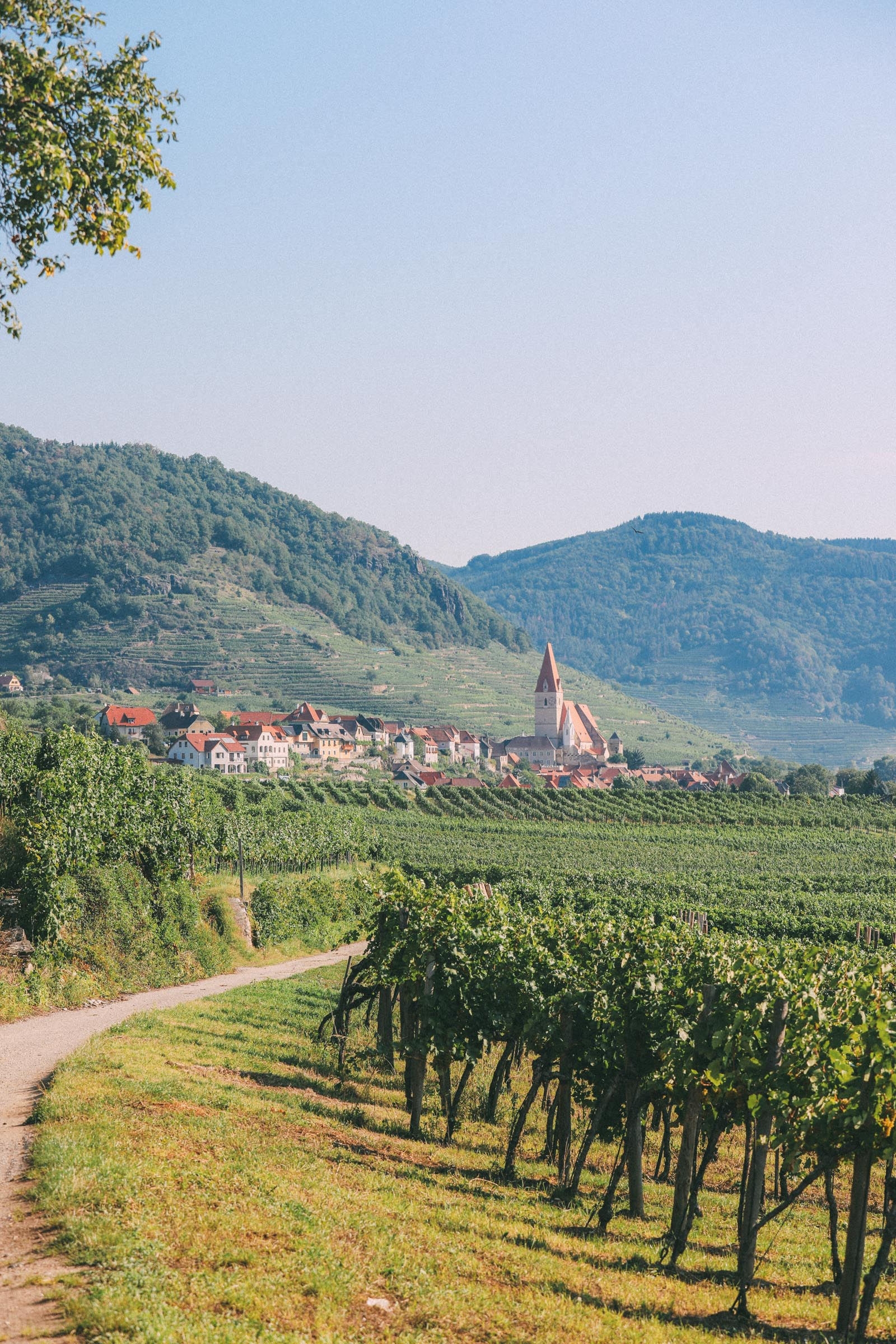 The Amazing Melk Abbey of The Wachau, Austria… And Hiking The Wachau World Heritage Trail (11)
