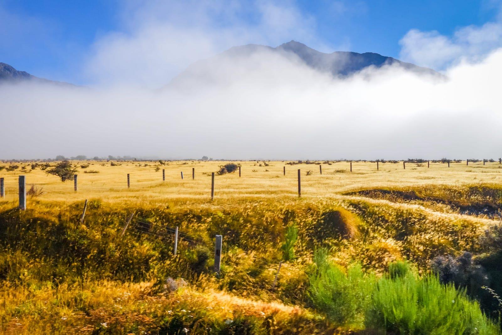 10 Amazing Places To Visit In Tasmania, Australia (3)