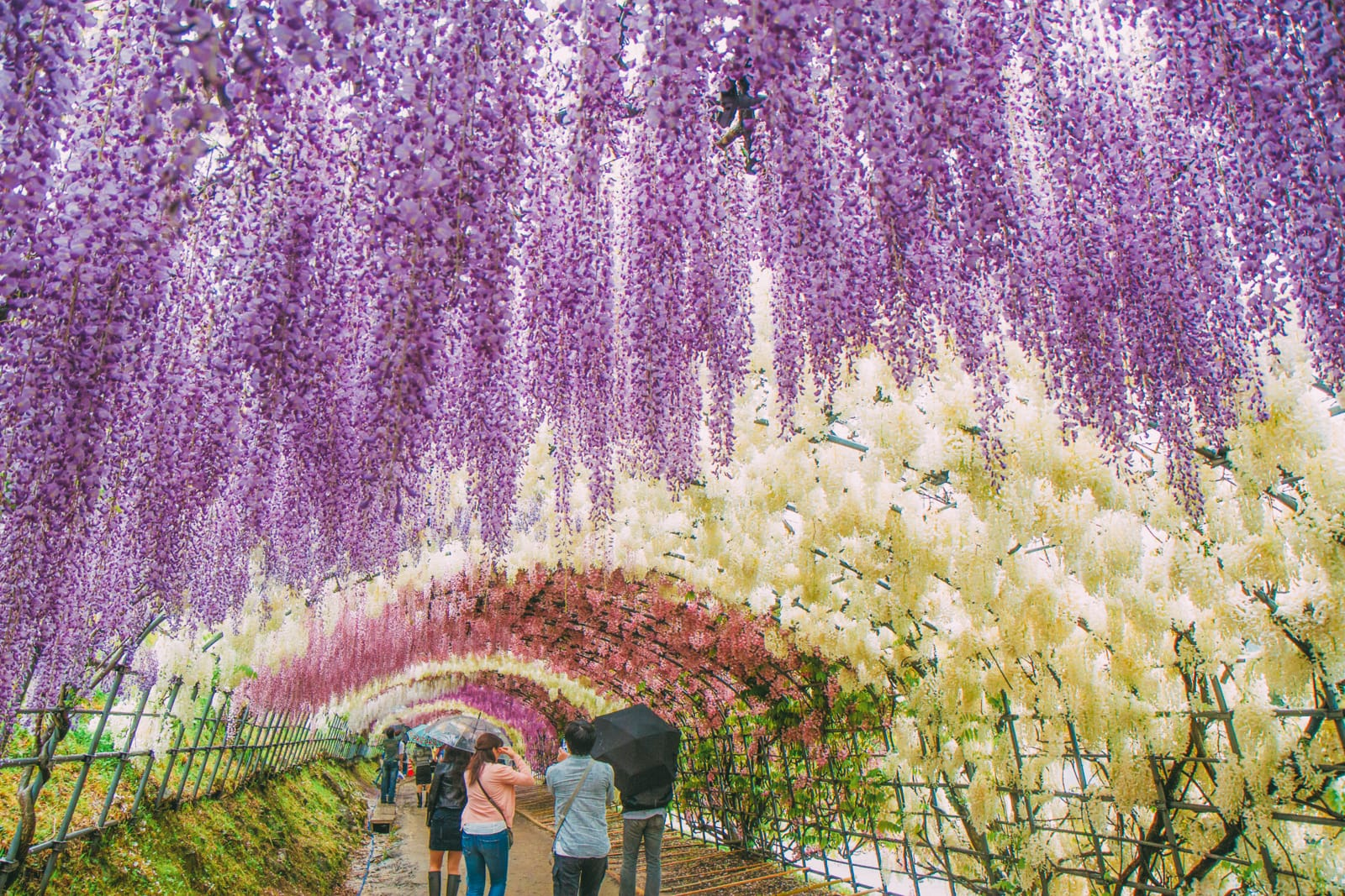 Your Complete Guide On Things To See And Do In Japan (10)