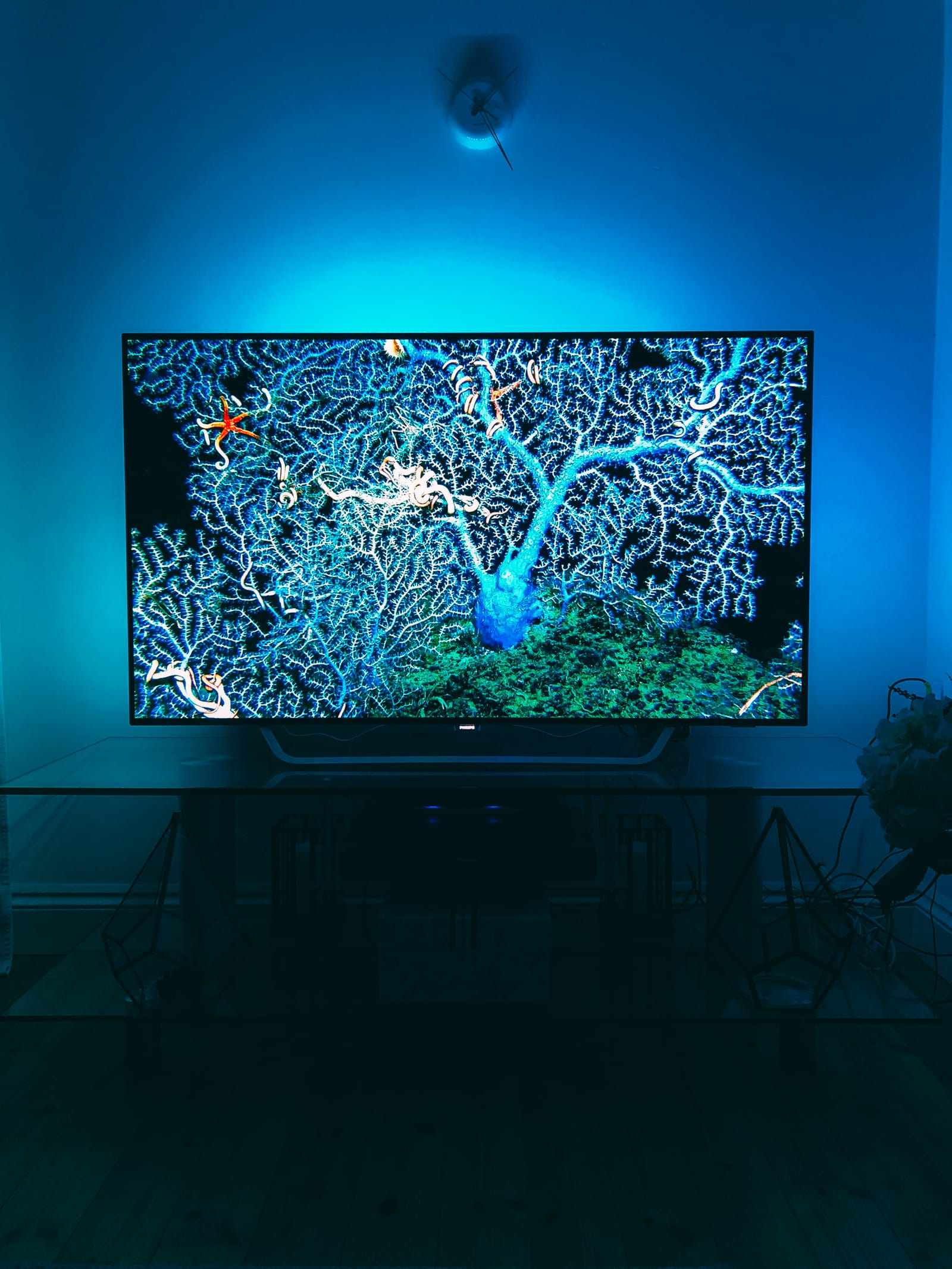 7 Reasons Why It's Great To NOT BeTravelling... And Instead, Be At Home! Philips OLED 4K TV (2)