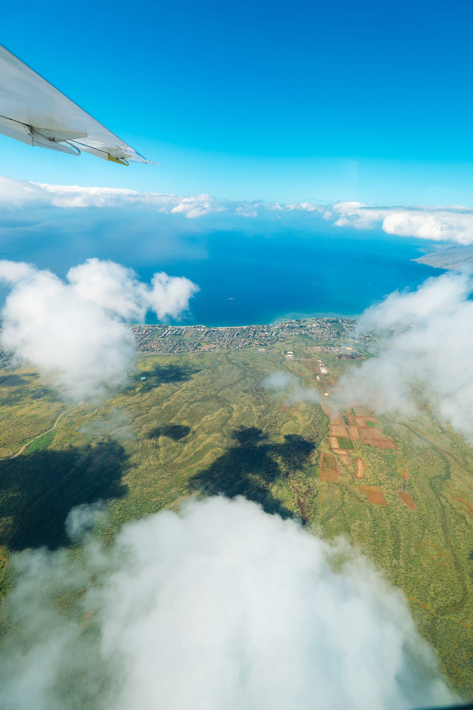 Photos And Postcards From Hawaii... (8)