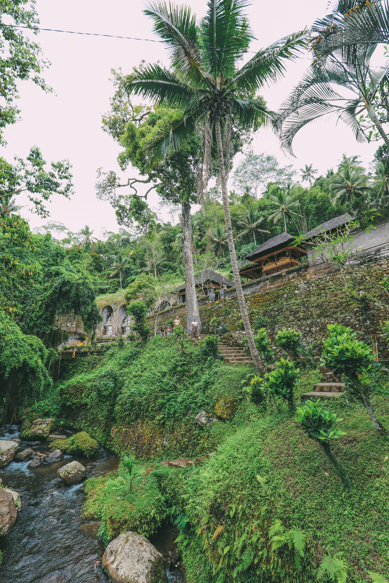 Bali Travel - Tegalalang Rice Terrace In Ubud And Gunung Kawi Temple (30)