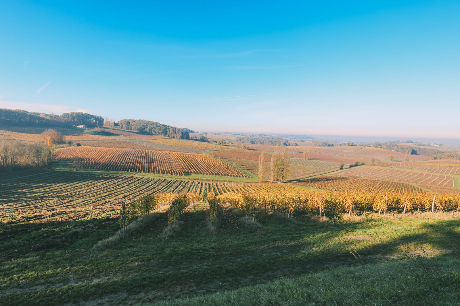 French Wine, French Castles And Delicious French Food - A Trip To French Wine Country (21)