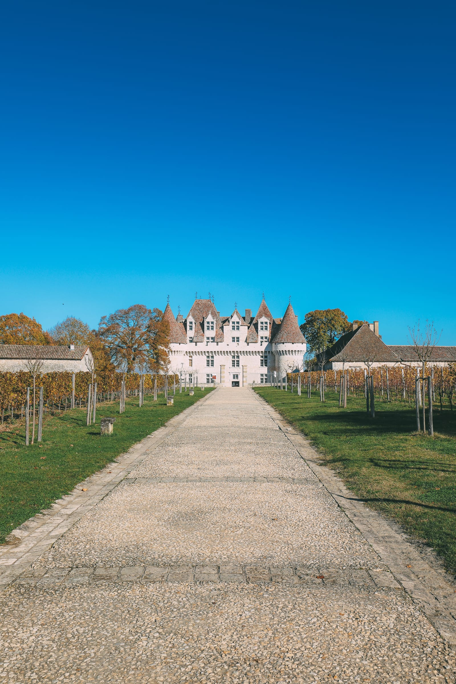 French Wine, French Castles And Delicious French Food - A Trip To French Wine Country (41)