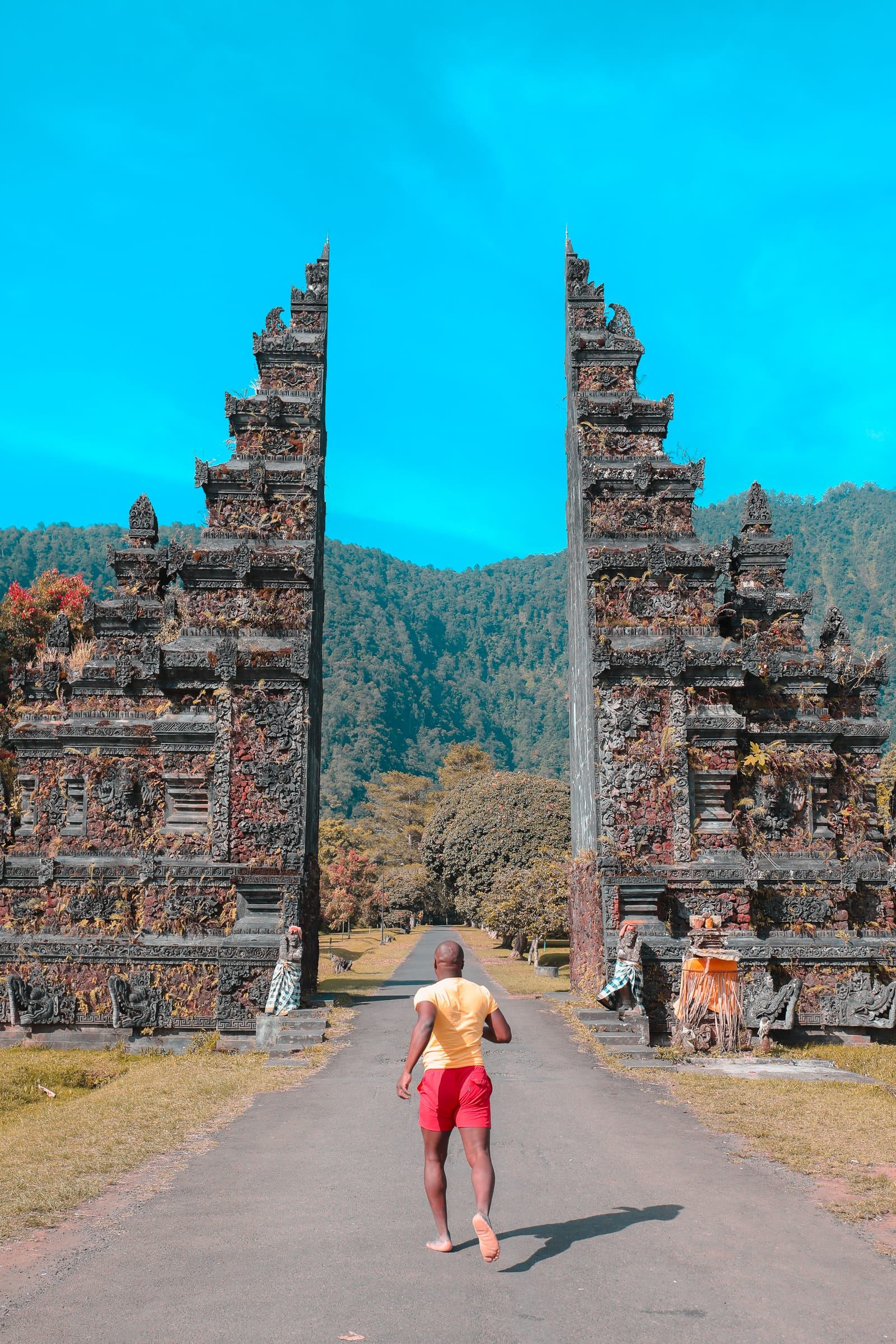 The Amazing Banyumala Twin Waterfalls In The Jungles Of Bali (2)