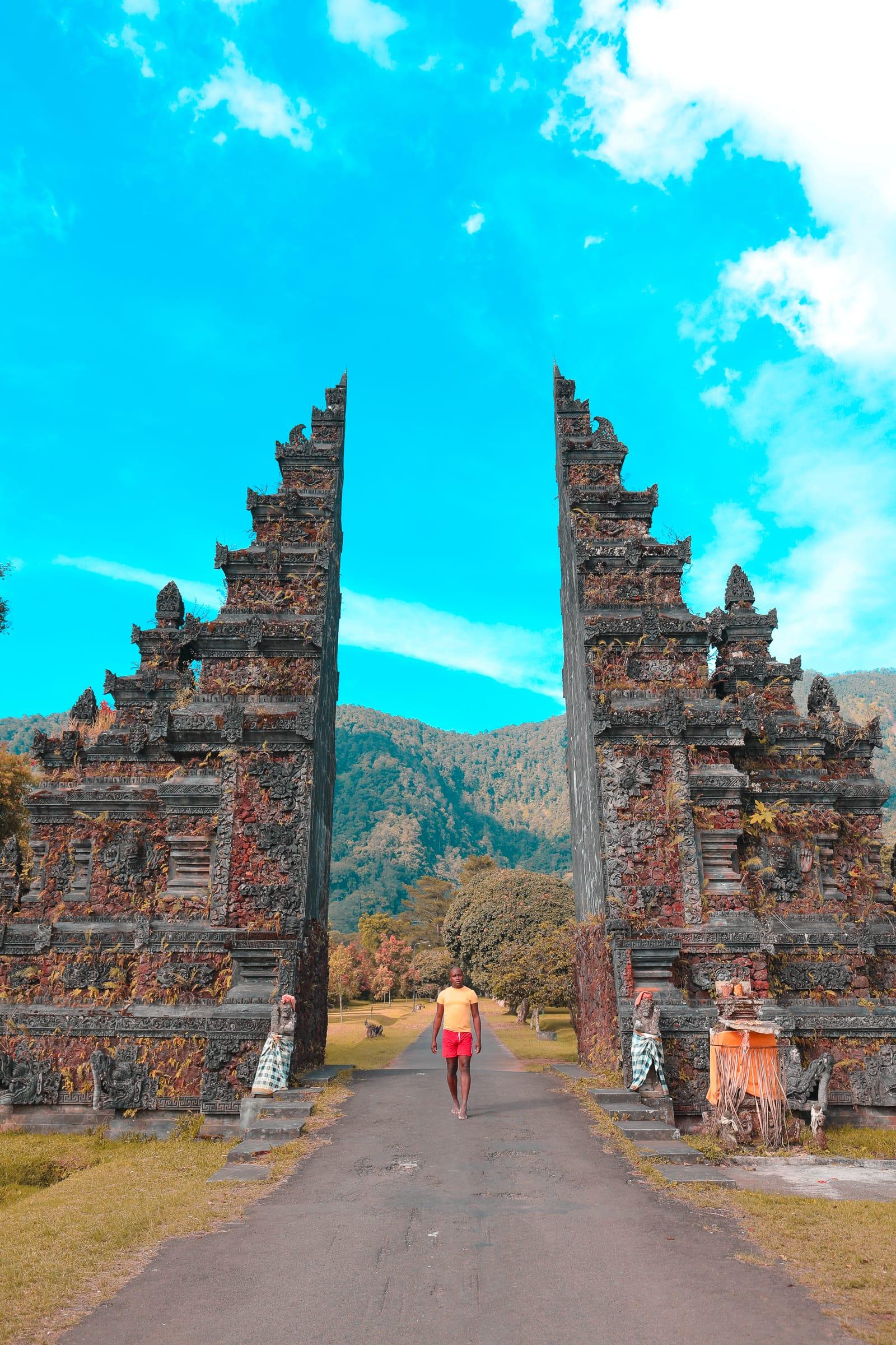 The Amazing Banyumala Twin Waterfalls In The Jungles Of Bali (5)
