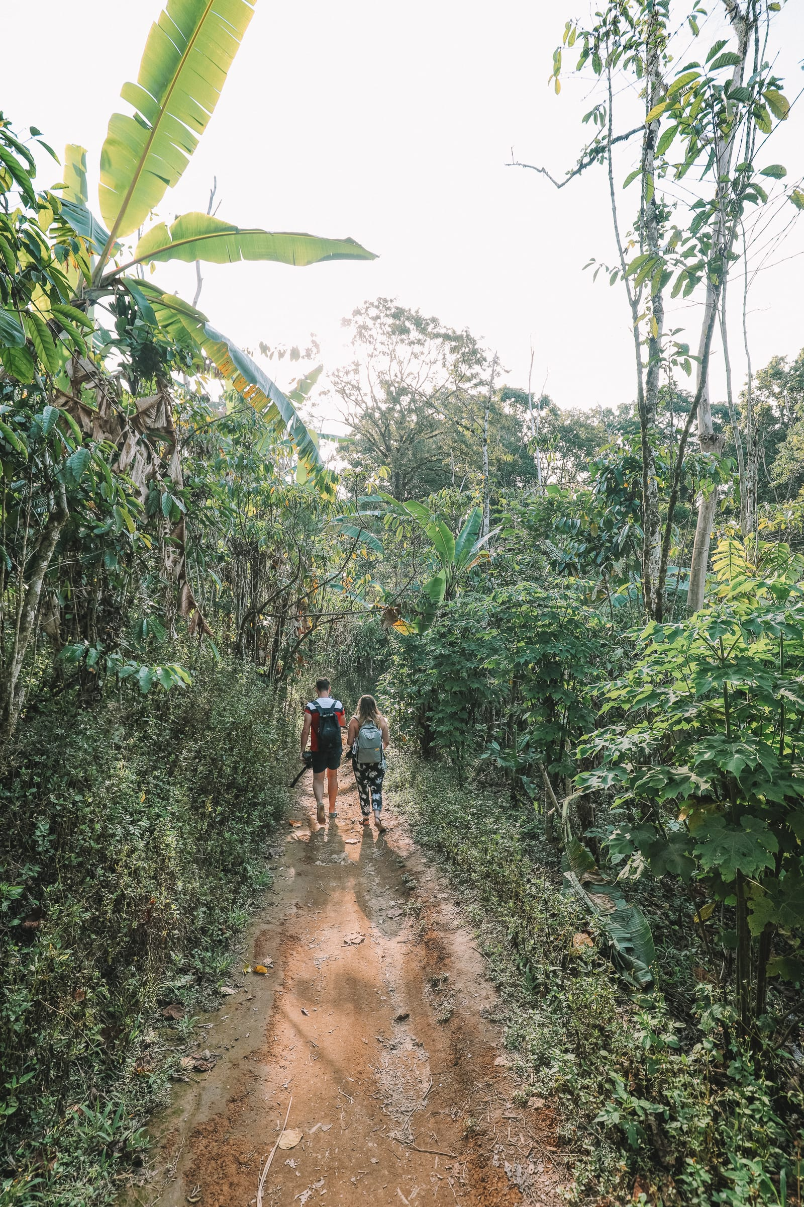 The Amazing Banyumala Twin Waterfalls In The Jungles Of Bali (6)