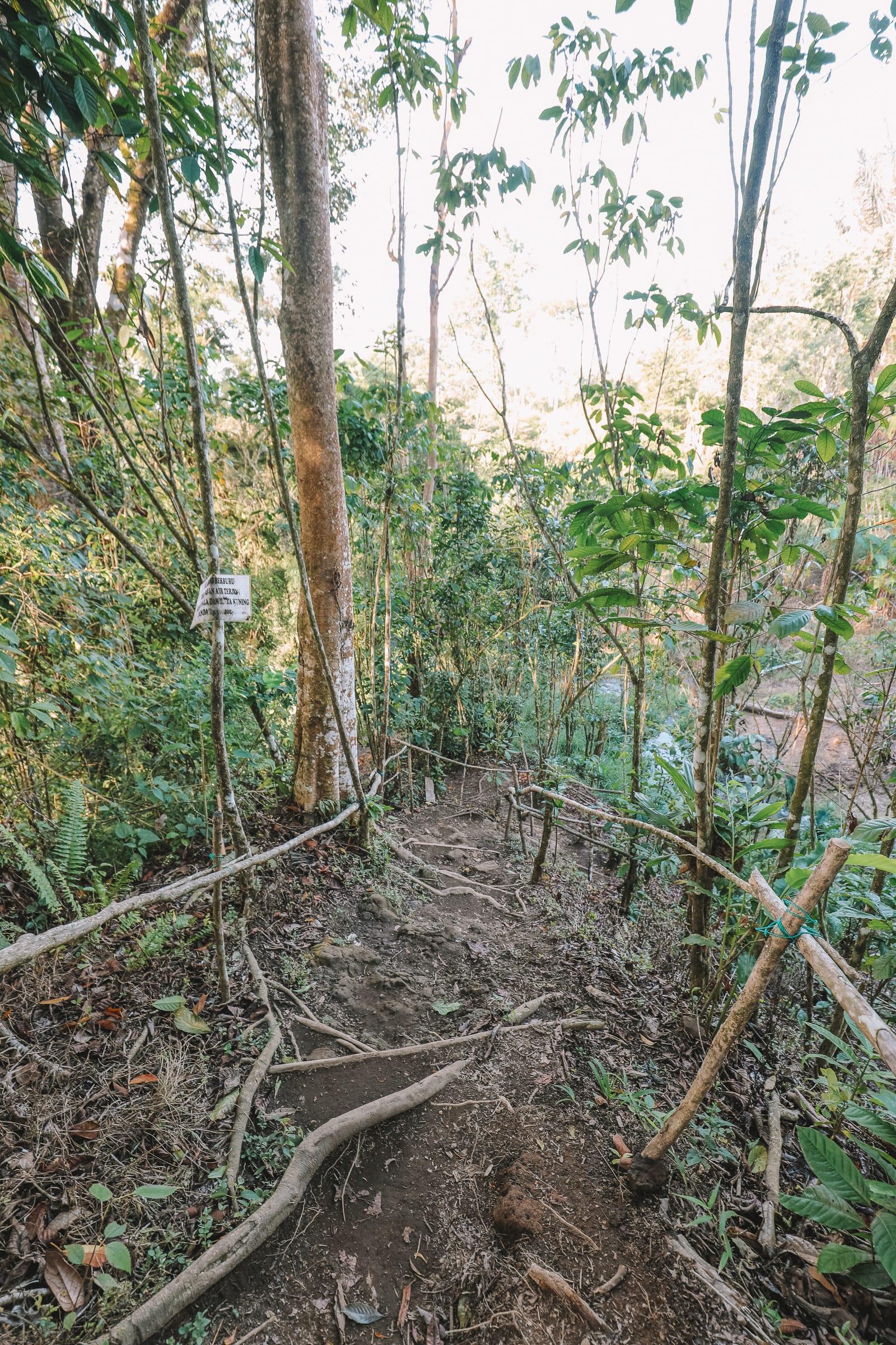 The Amazing Banyumala Twin Waterfalls In The Jungles Of Bali (7)