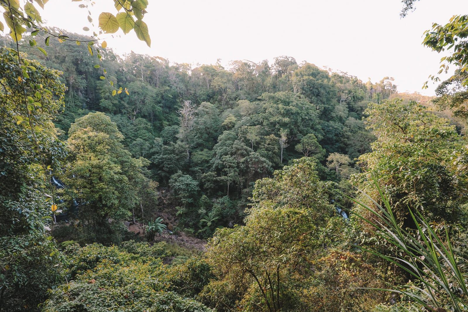 The Amazing Banyumala Twin Waterfalls In The Jungles Of Bali (8)