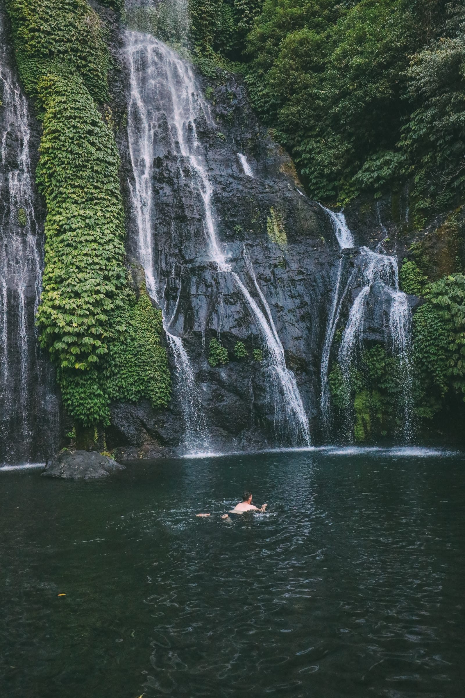 The Amazing Banyumala Twin Waterfalls In The Jungles Of Bali (13)